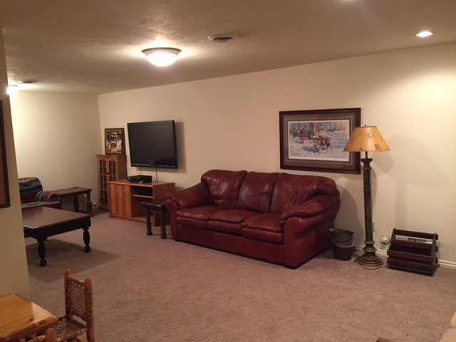 Cabin downstairs family room.JPG
