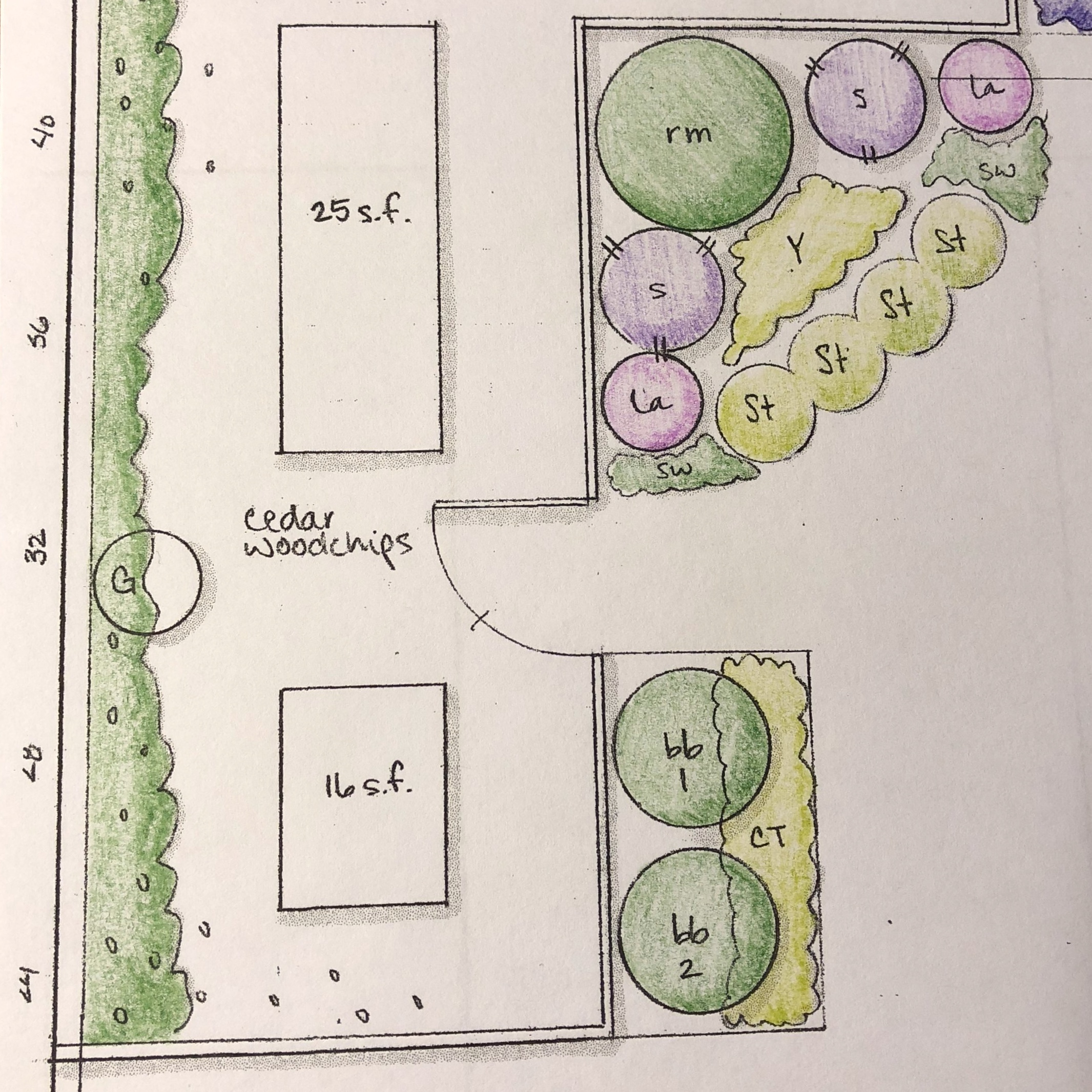 Close up of a hand-drawn landscape planting plan.