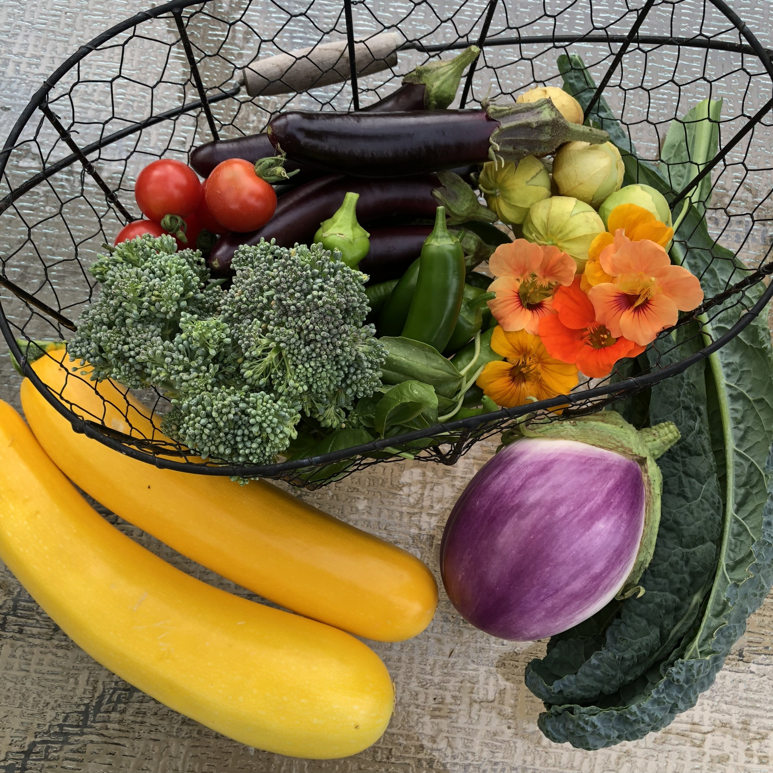 A basket of fresh vegetables, including yellow zucchini squash, purple eggplant, green broccoli, red cherry tomatoes, and orange nasturtium flowers.