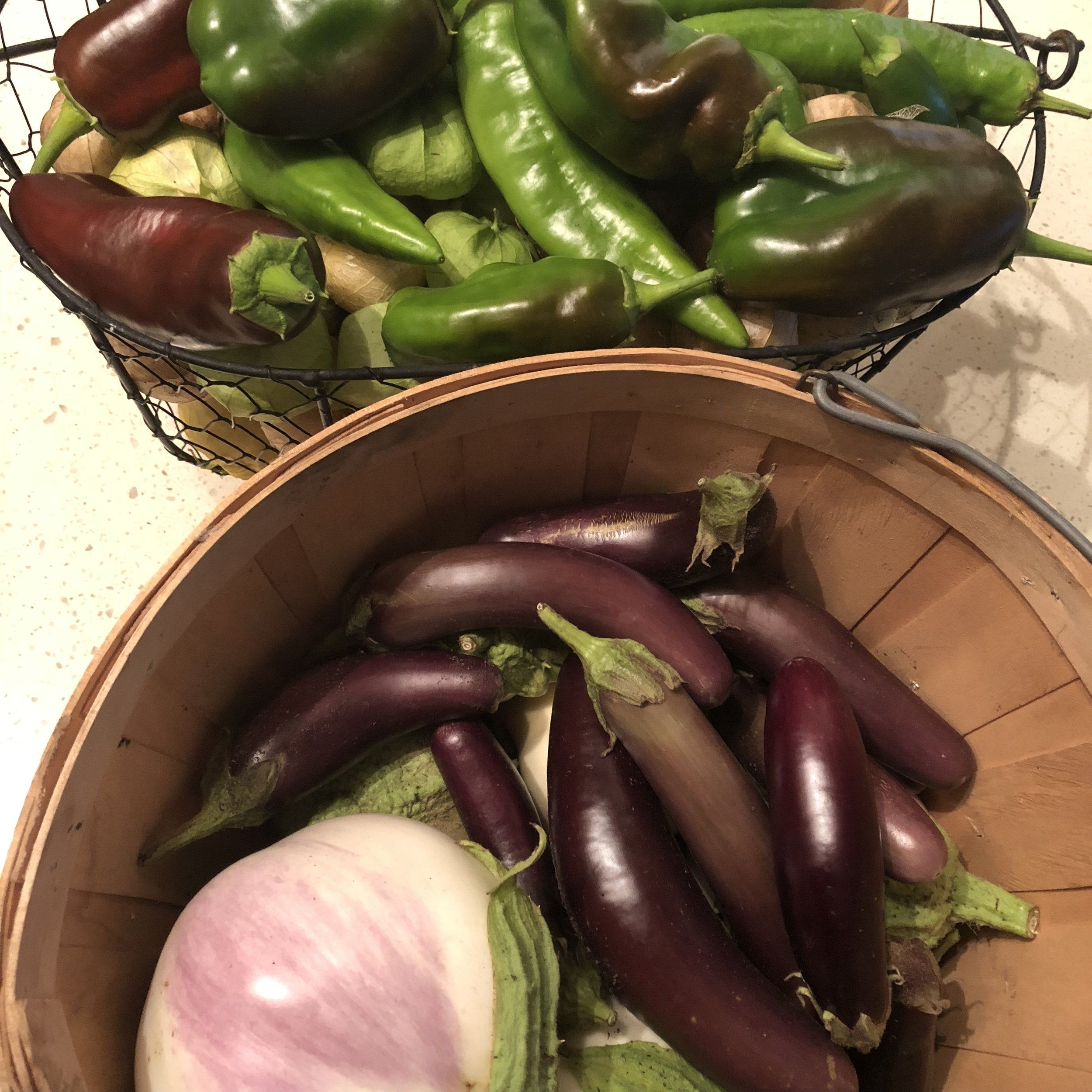 A basket of purple eggplant and green peppers.
