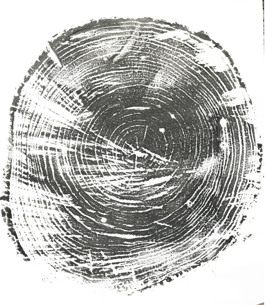 "Printed tree rings, ""Bennington."""