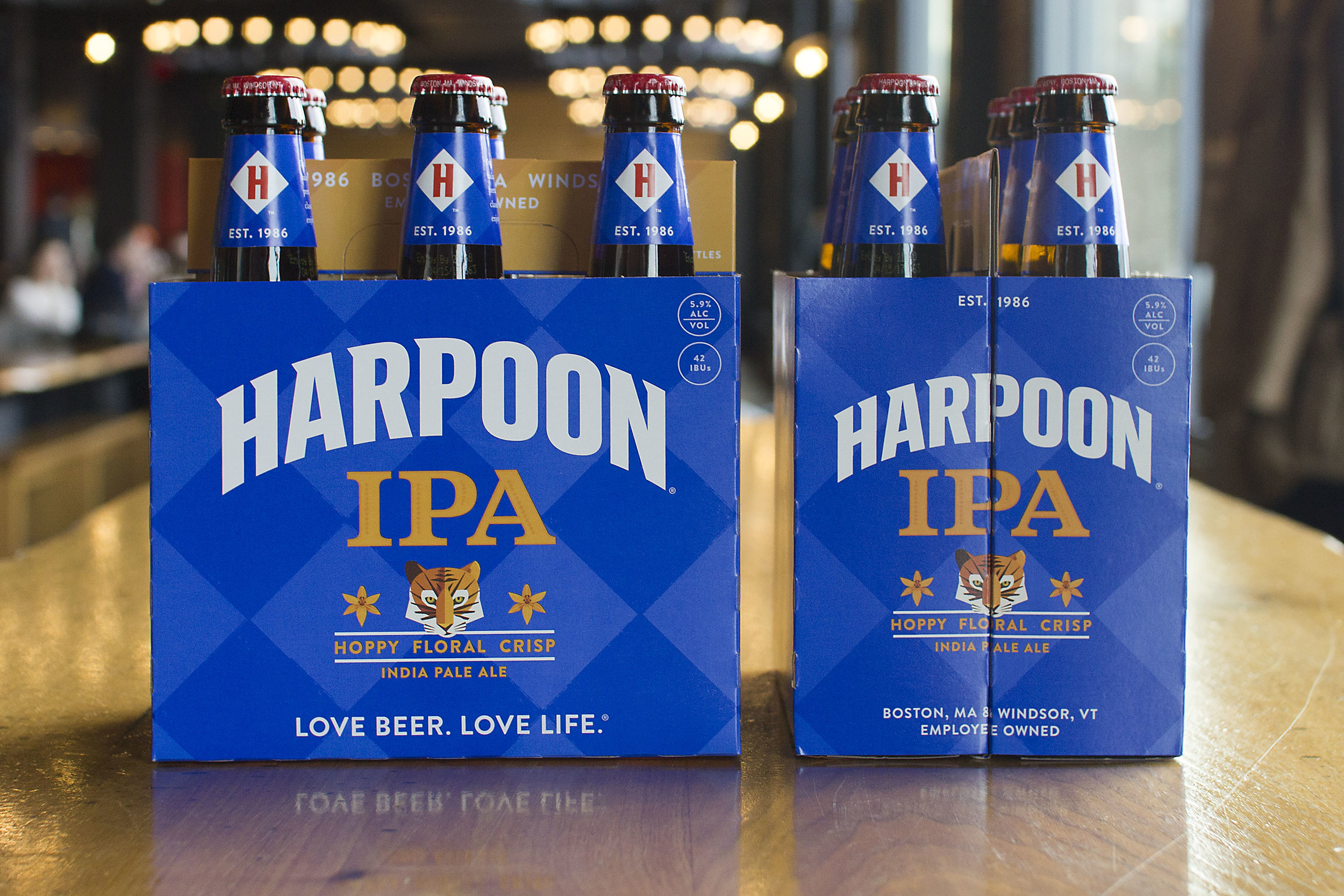 """Harpoon """"IPA"""" current packaging, 2017. Photo courtesy of Harpoon Brewery."""