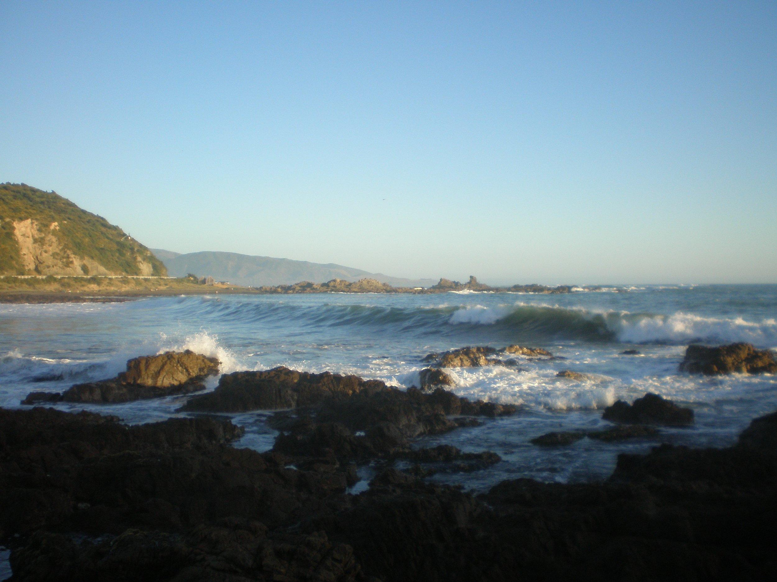 Houghton Bay - Wellington