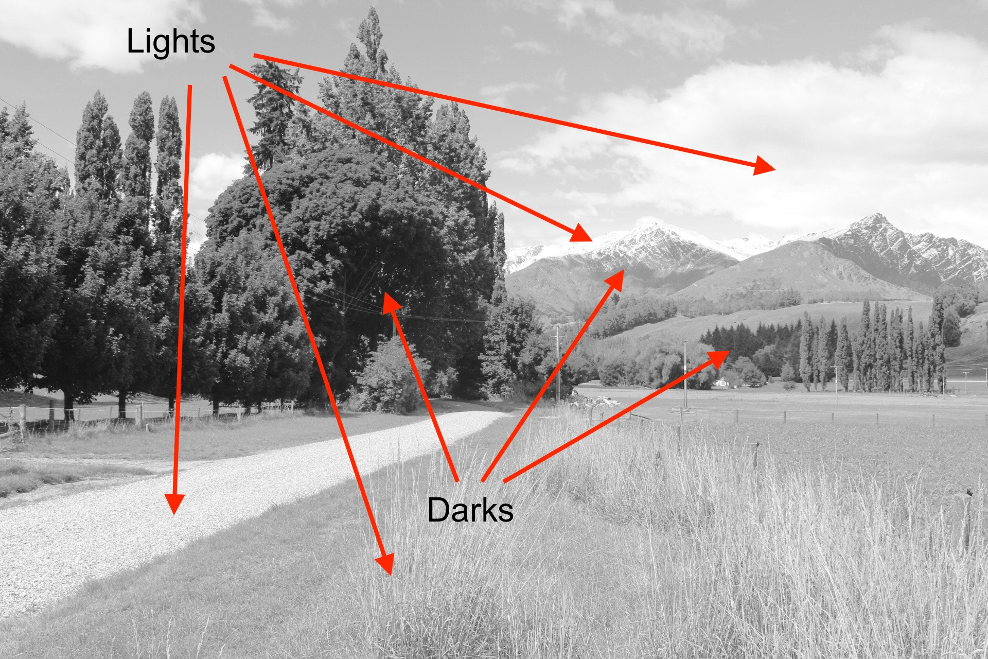 Trees and Mountains - Tonality - Darks and Lights.jpg