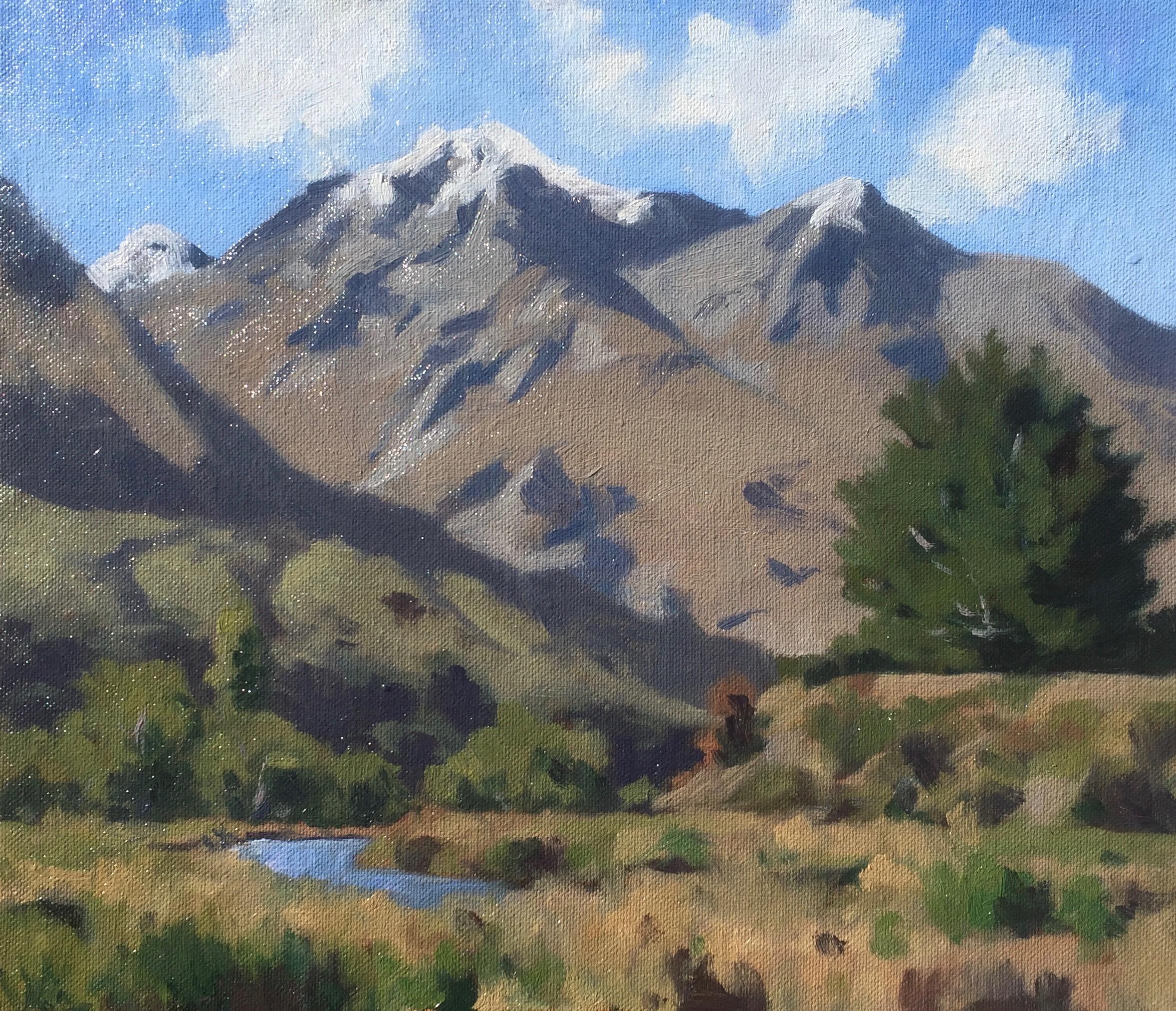 Mt Alaska - Samuel Earp - oil painting - plein air.jpg