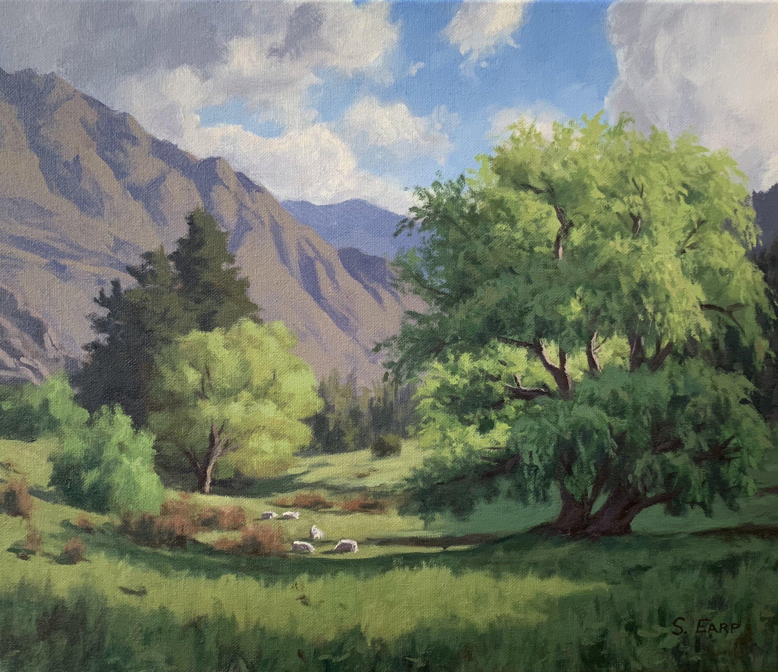 Willow Trees and Light - oil painting - Samuel Earp - landscape artist.jpg