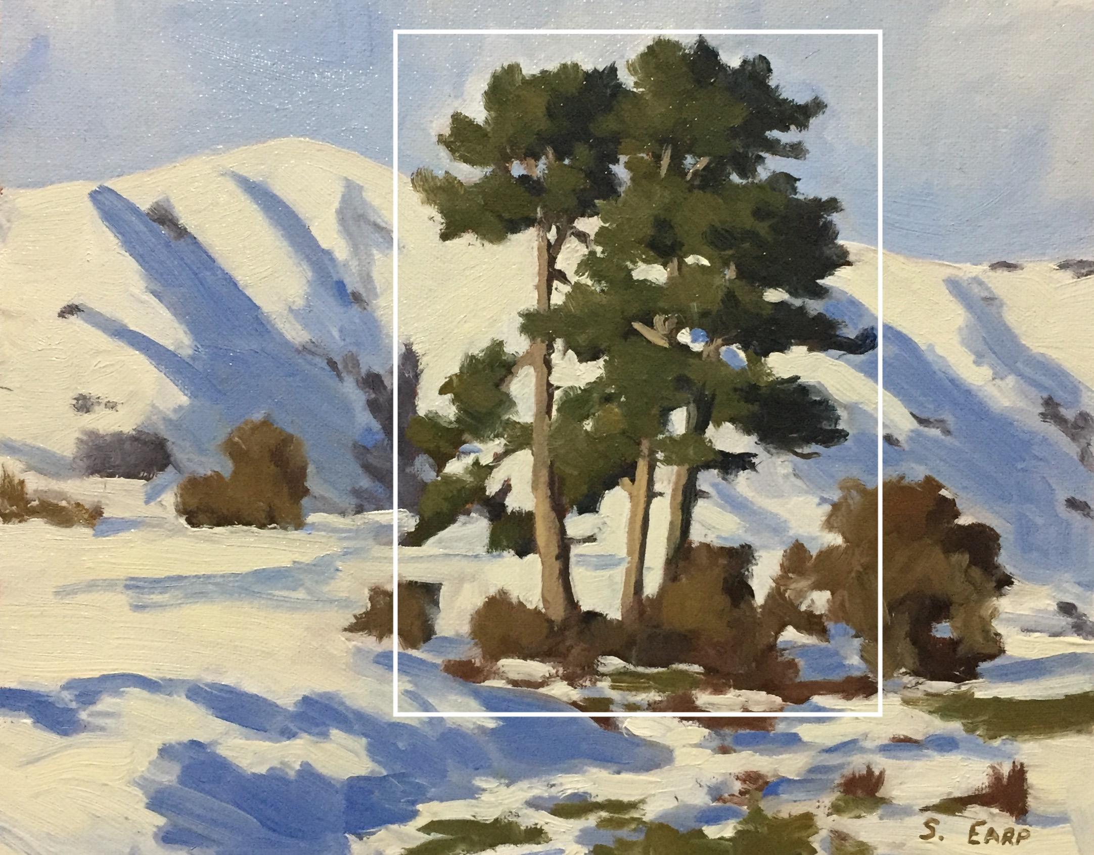 Pine Trees - Tobins Track - Samuel Earp - plein air copy.jpg