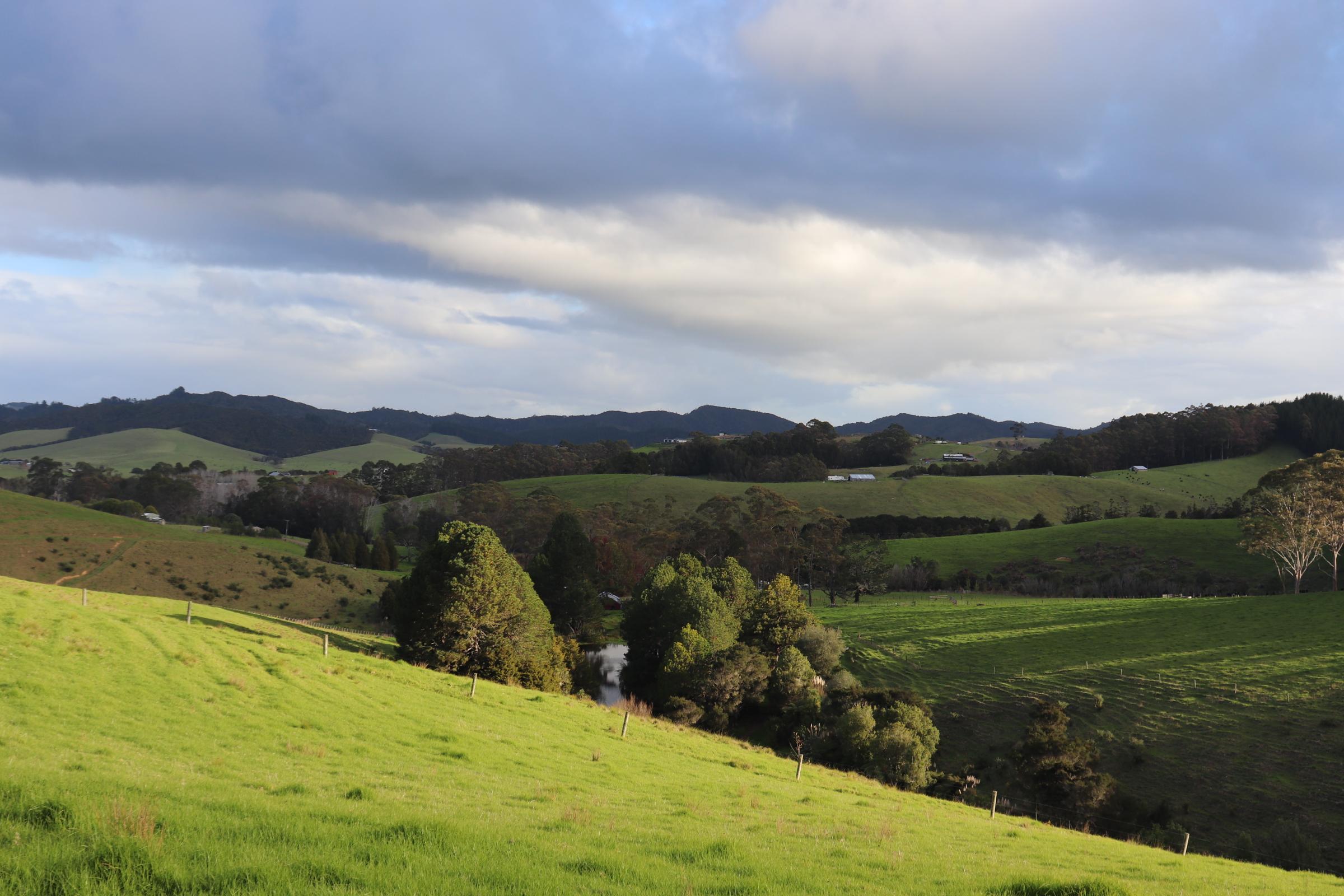 Haruru, New Zealand