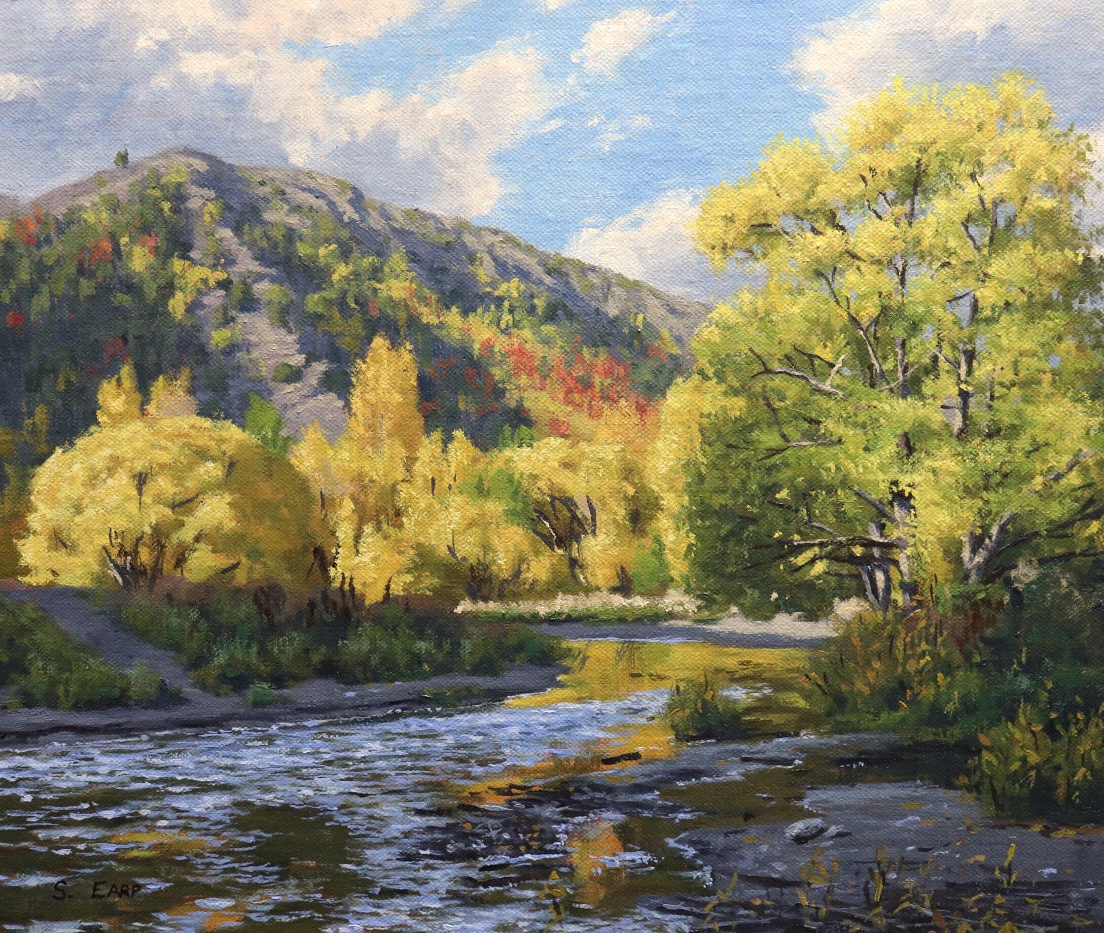 Video Download Autumn Trees Samuel Earp Artist