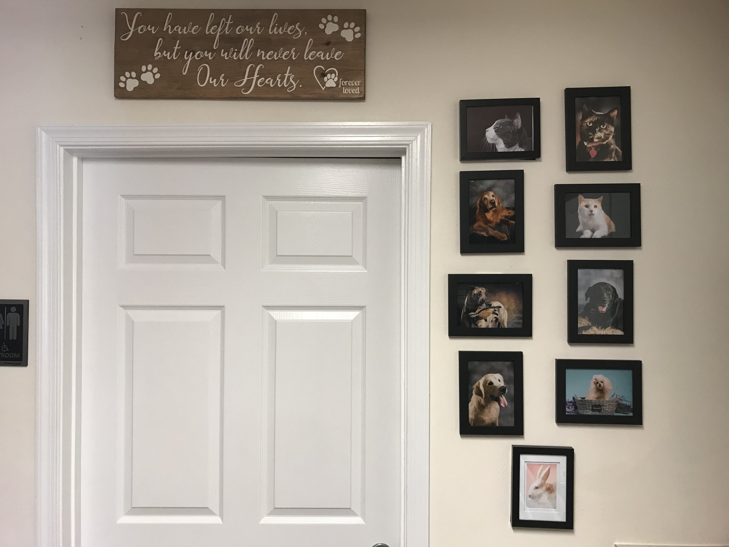 The Memorial Wall in our studio where we have portraits of every pet who has crossed the rainbow bridge since we made their portrait.