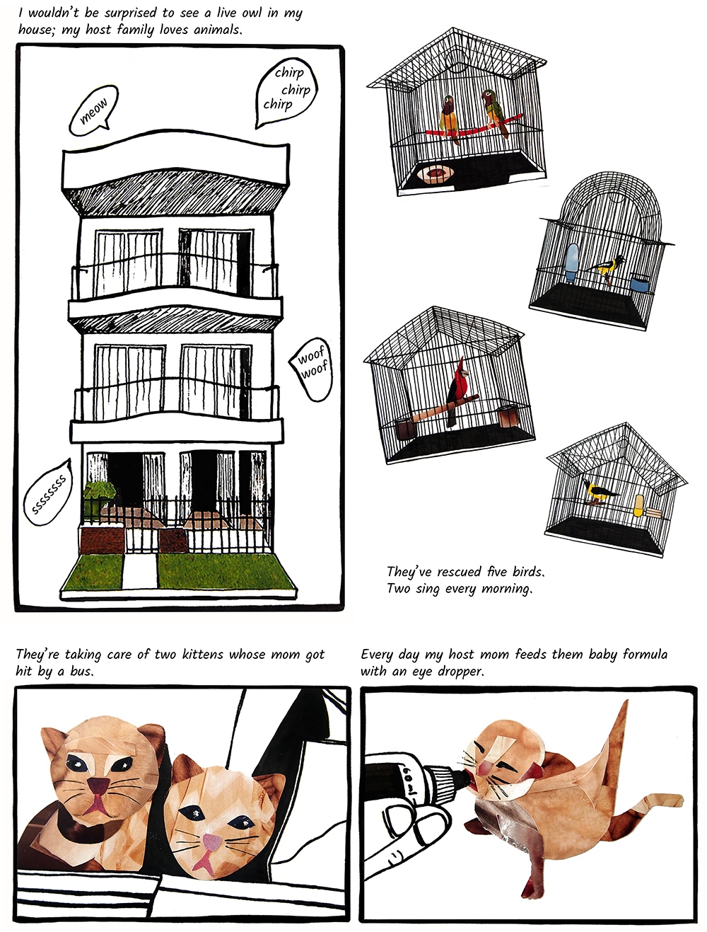#4-4 the house of animals-2.jpg