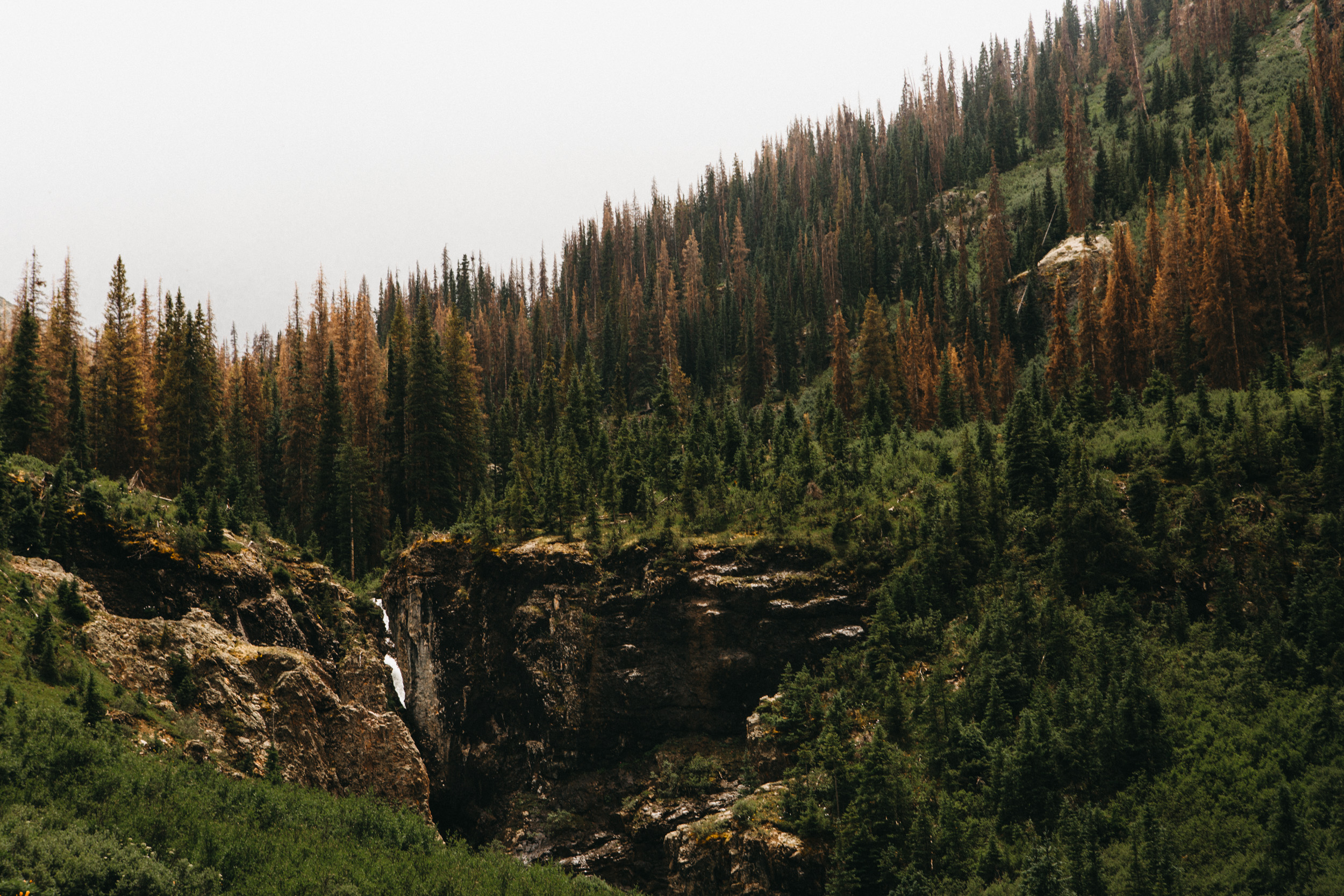 Colorado-50.jpg