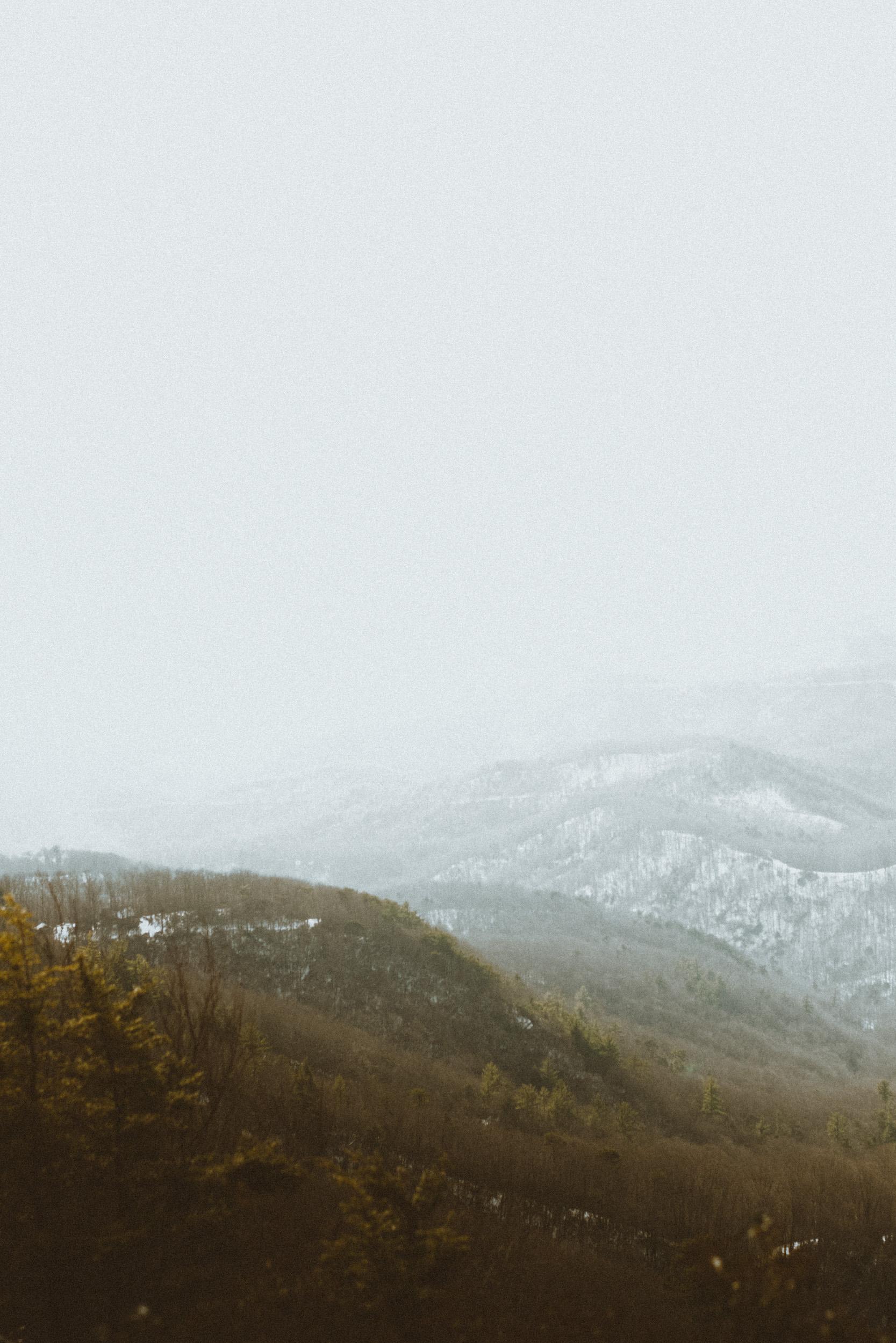 Boone-2.jpg