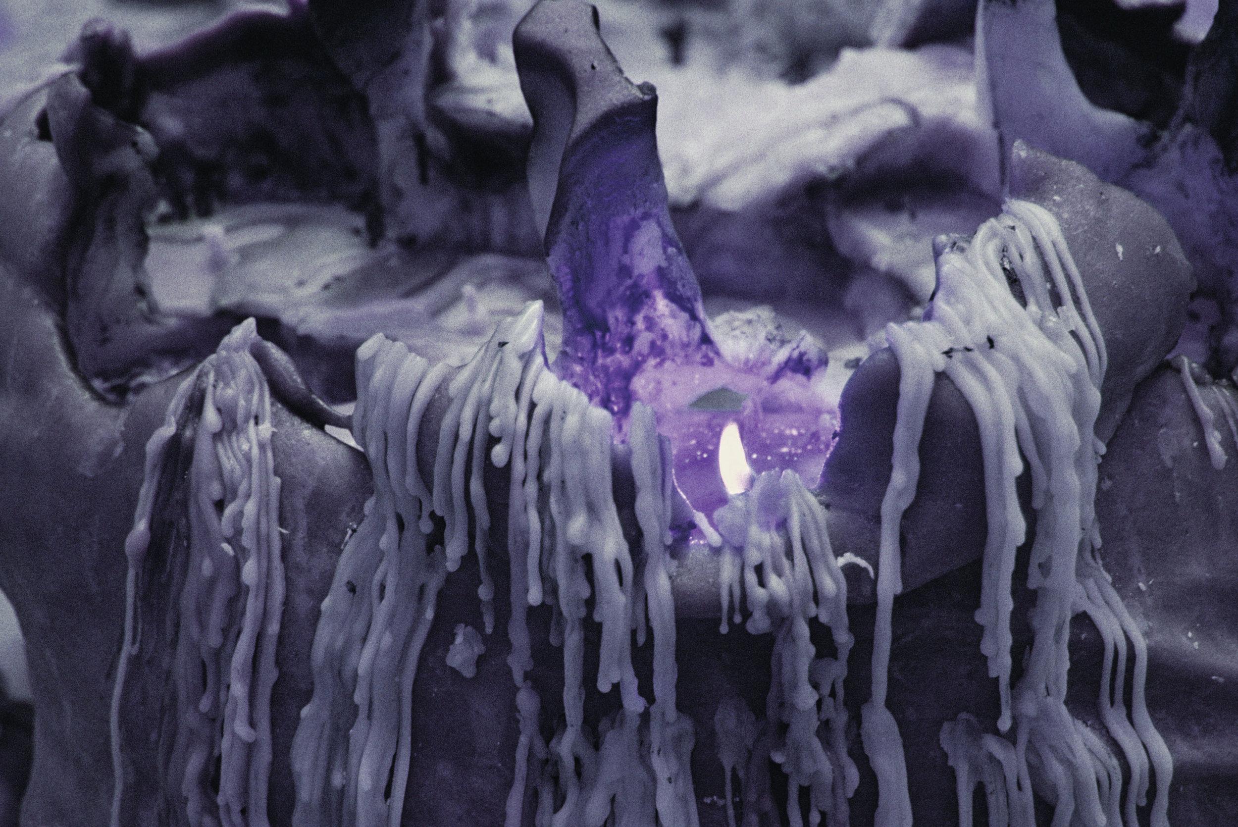 purple_other3.jpg