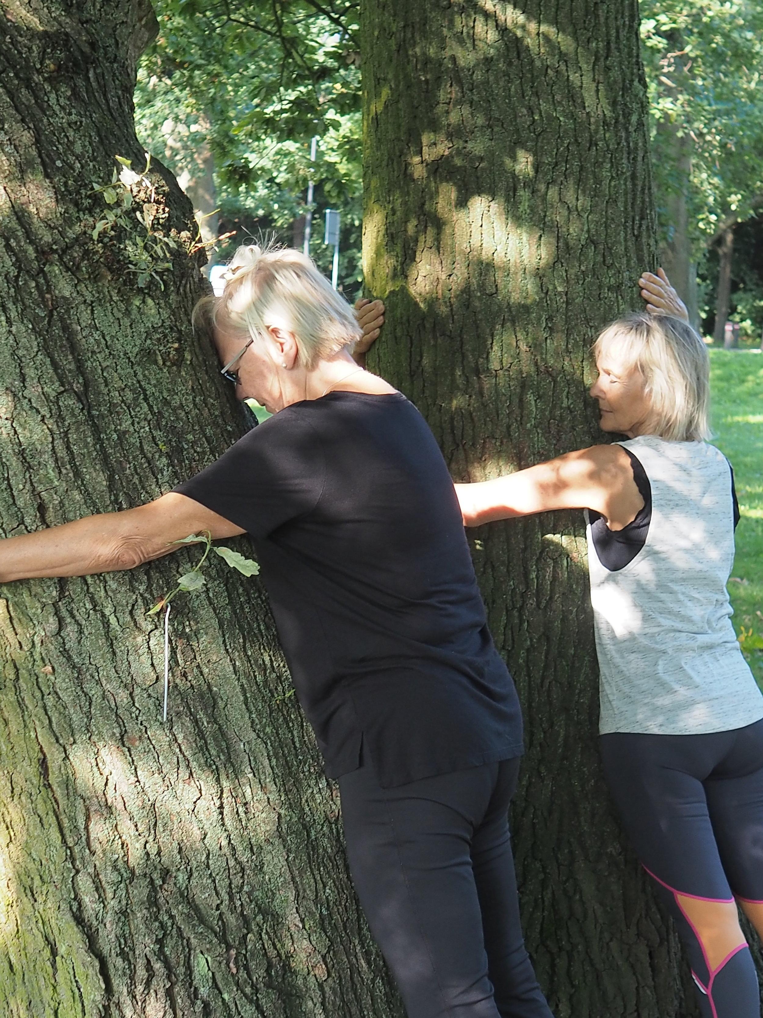 Træ-kram 3.JPG