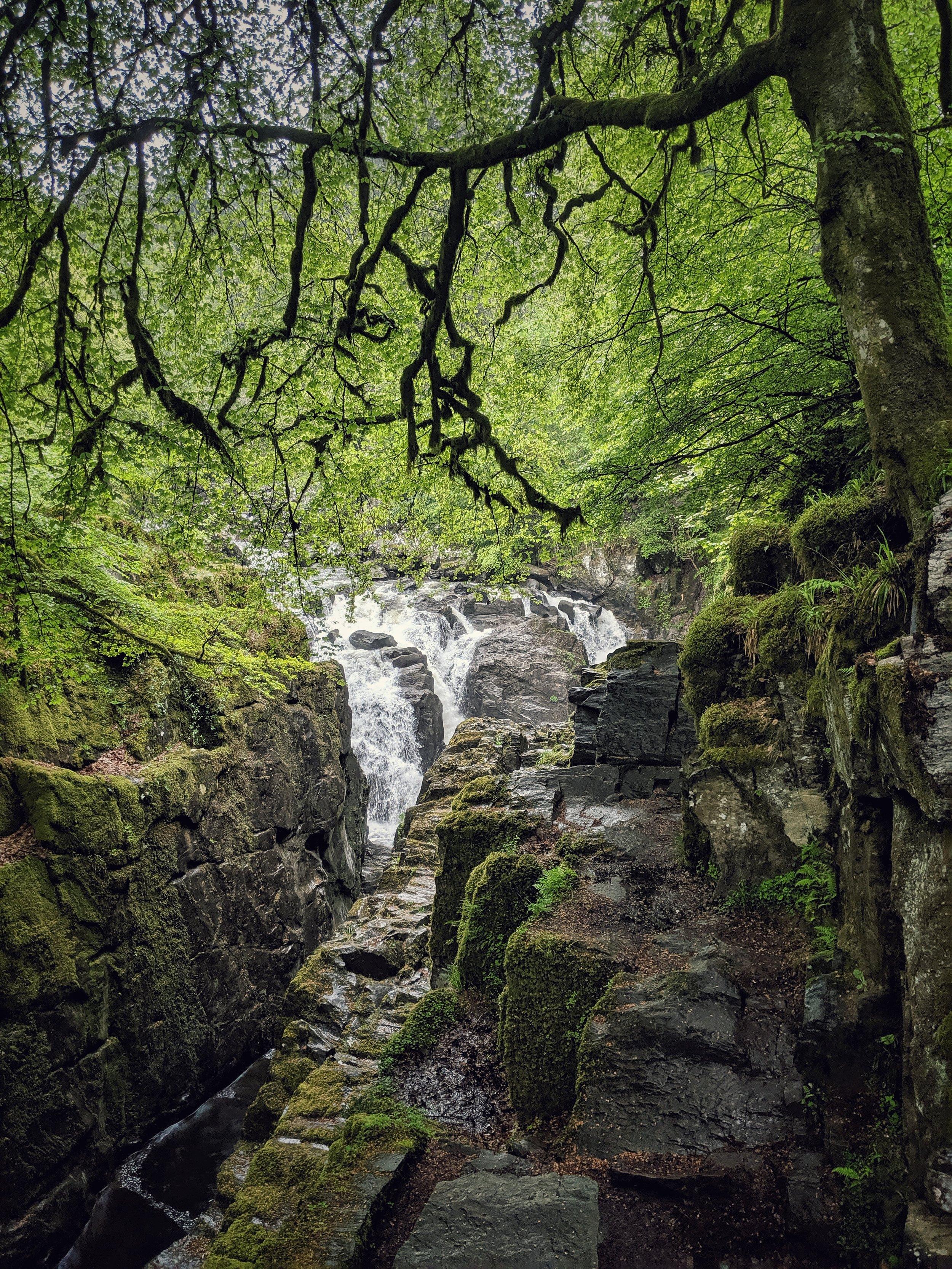 The Hermitage - Scotland