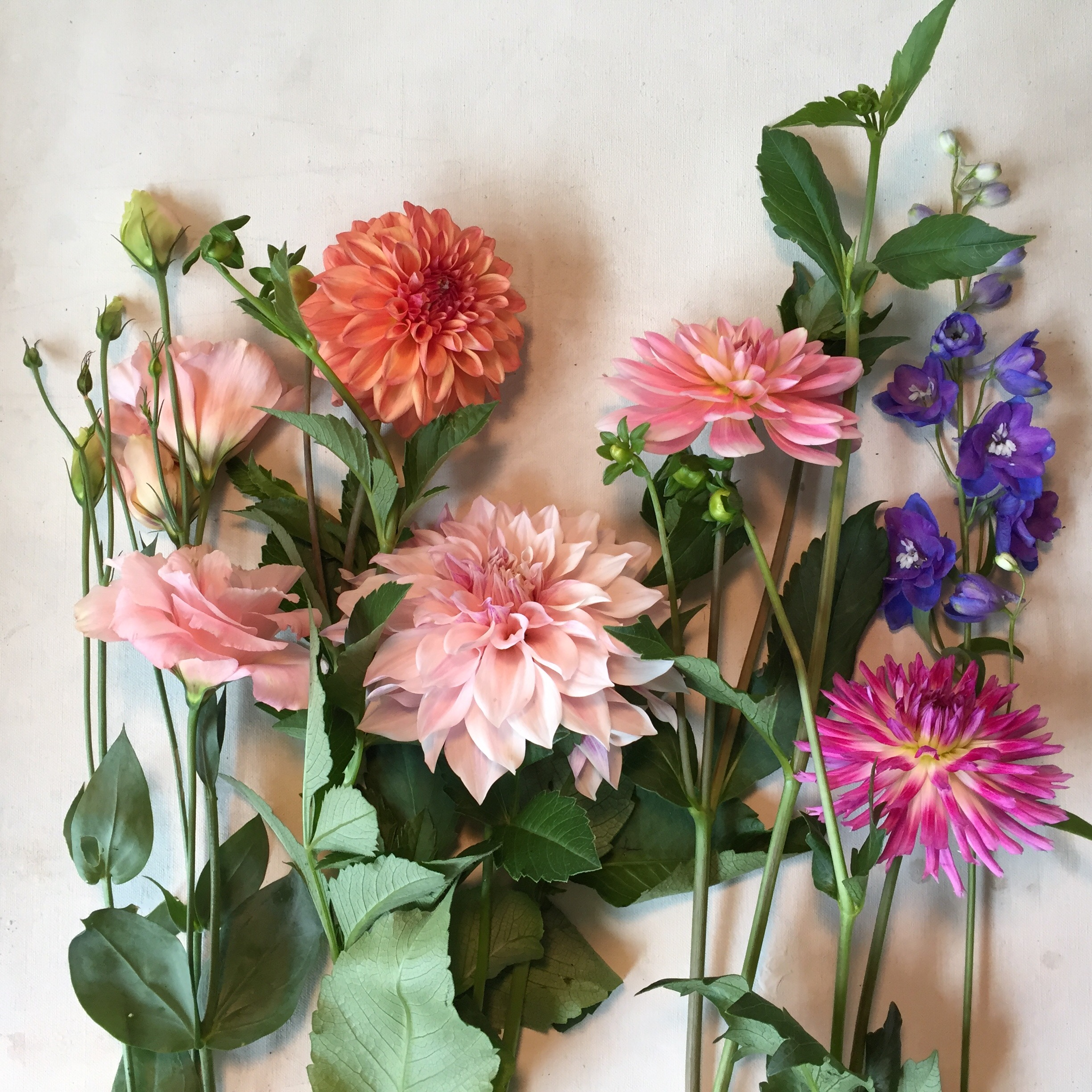 bouquet deconstructed.jpg