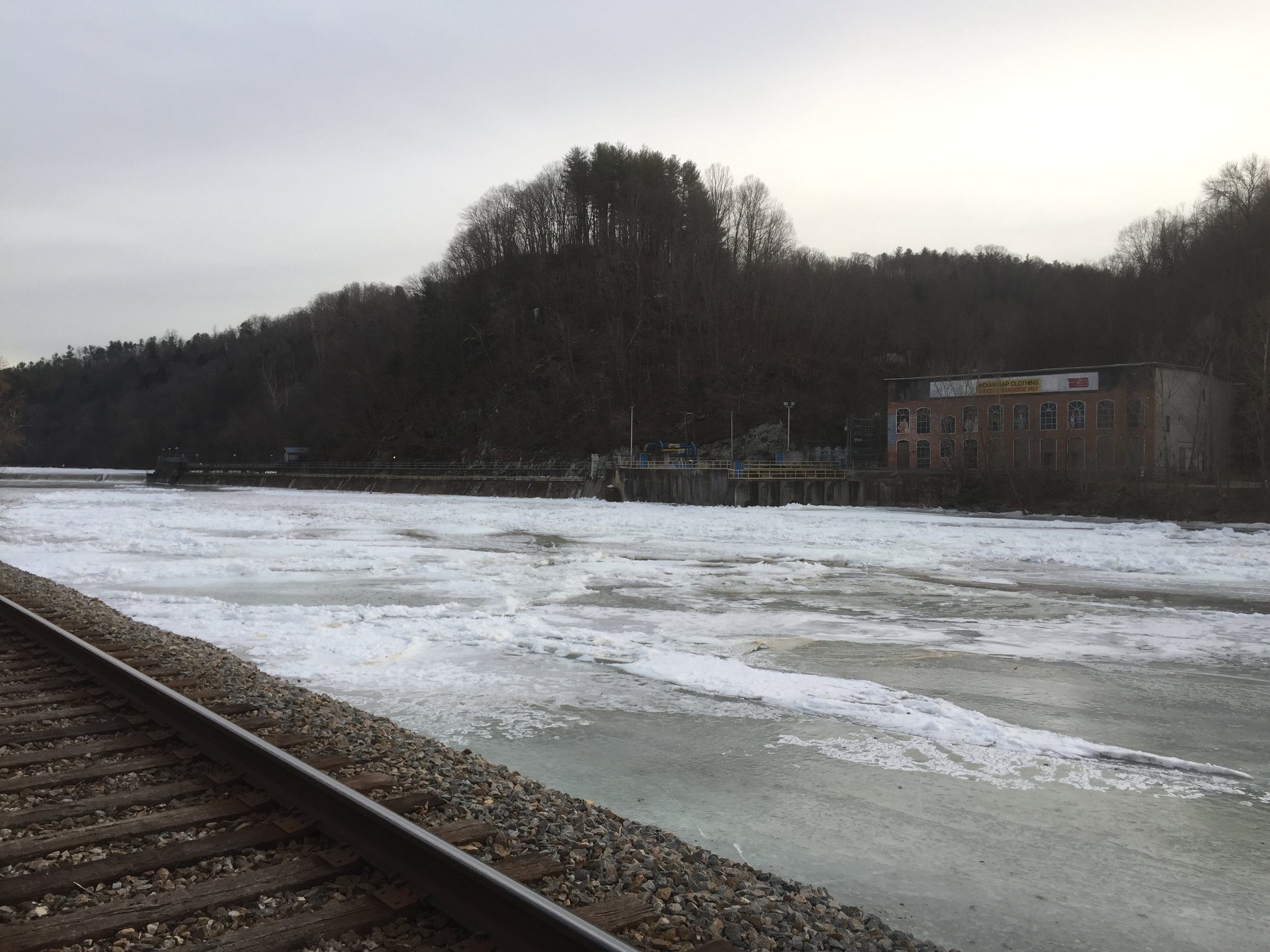 The French Broad River, which runs about two miles from the farm, froze during a long stretch of below-freezing days. The flowers, protected by low tunnels, soldiered on.