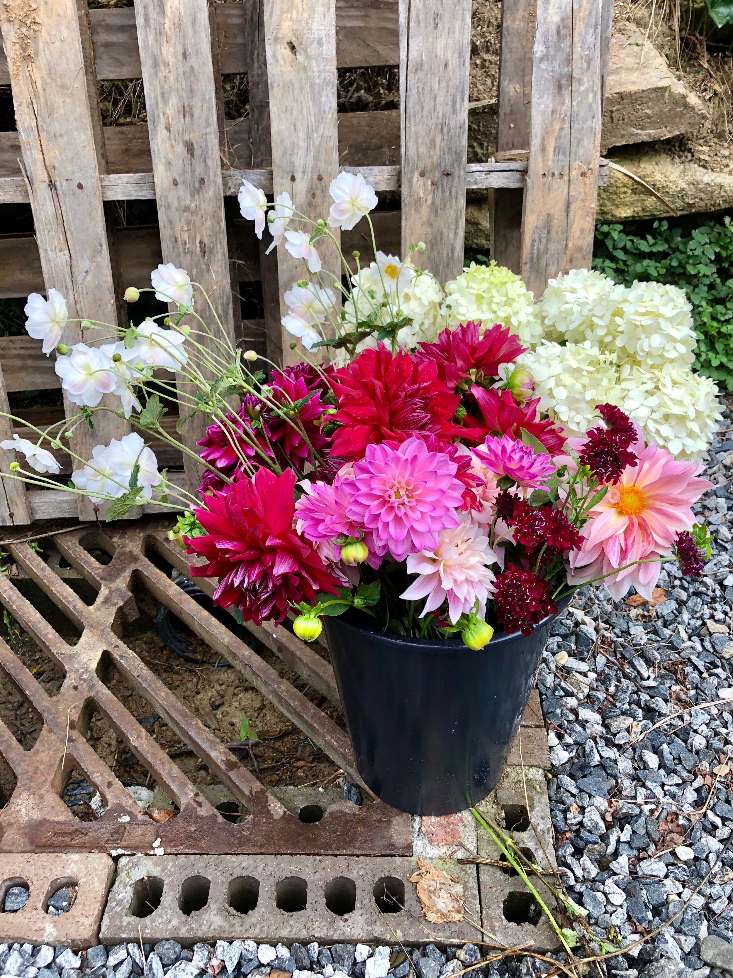 DIY Flowers Asheville