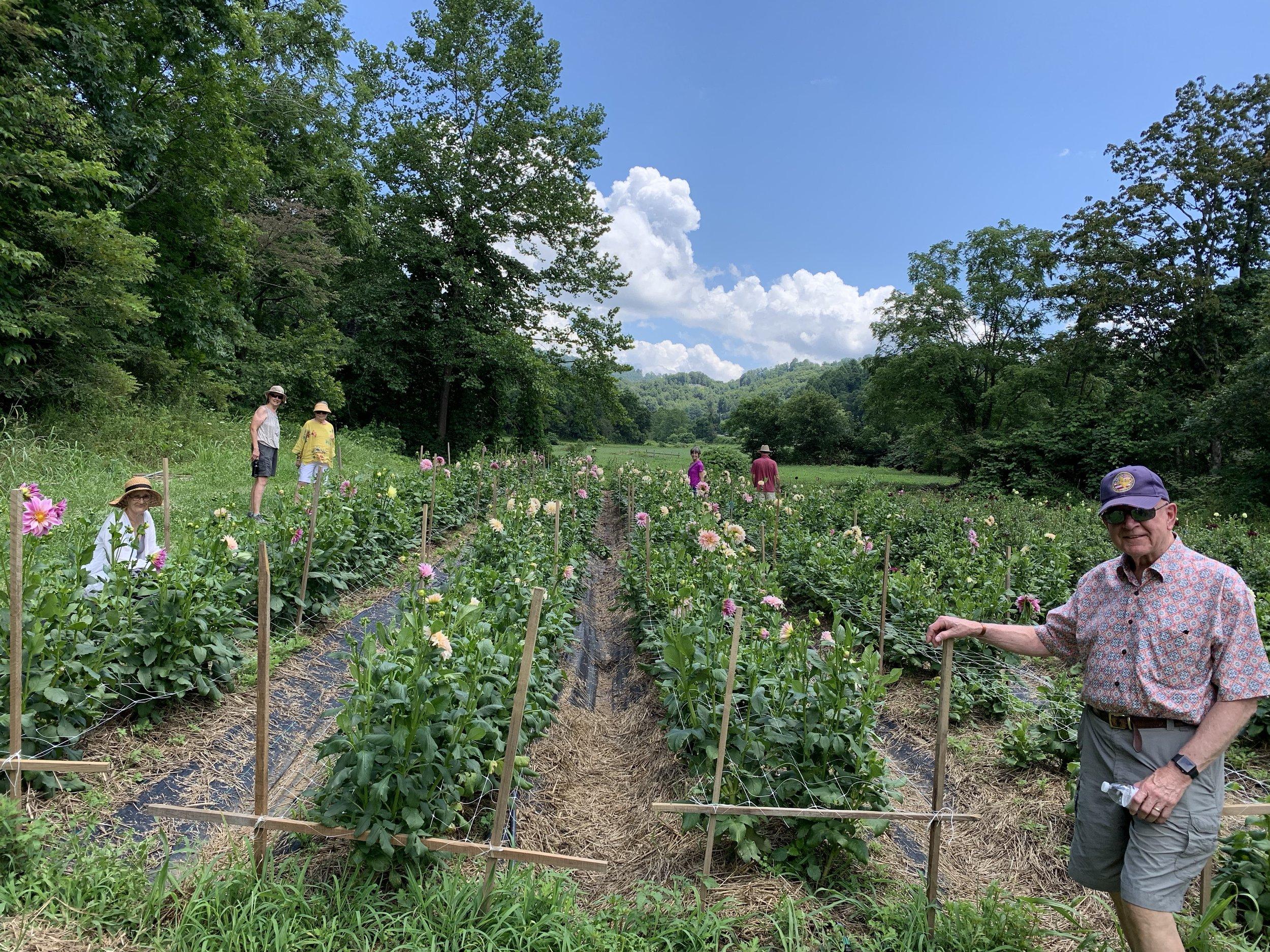 Flower Farm Tour Asheville