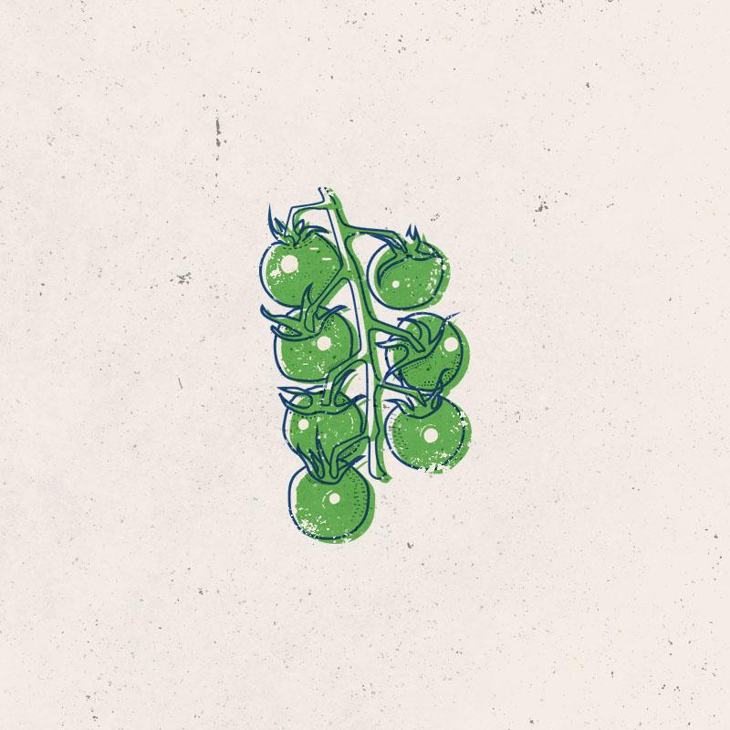 Tomatoes2Artboard 1.jpg