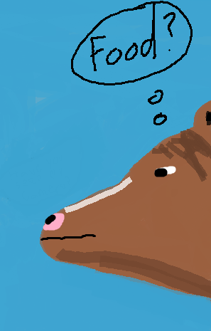 This was meant to be a horse