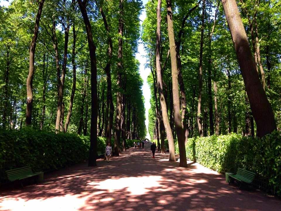 Park in St Petersburg