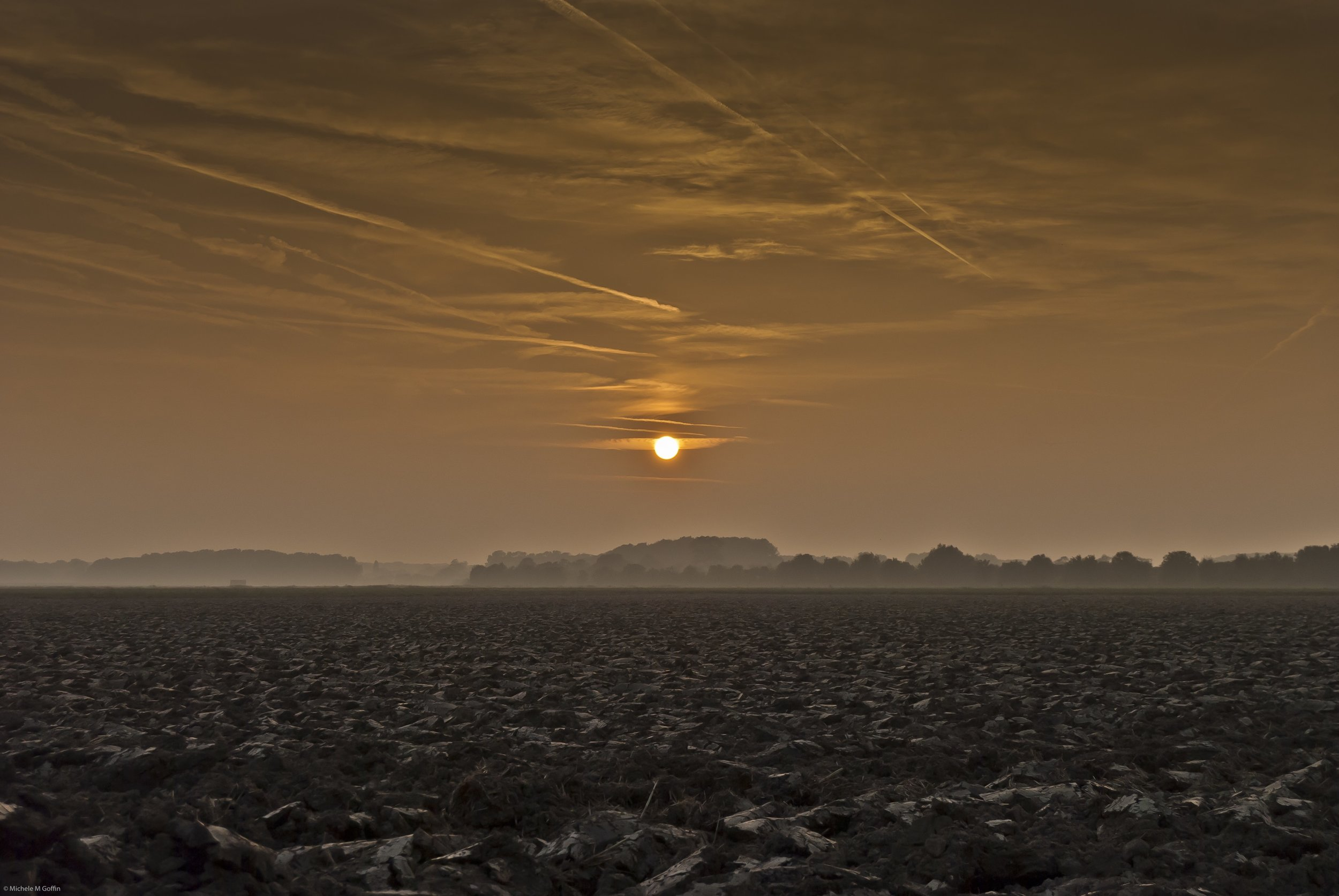 Sunset October Field