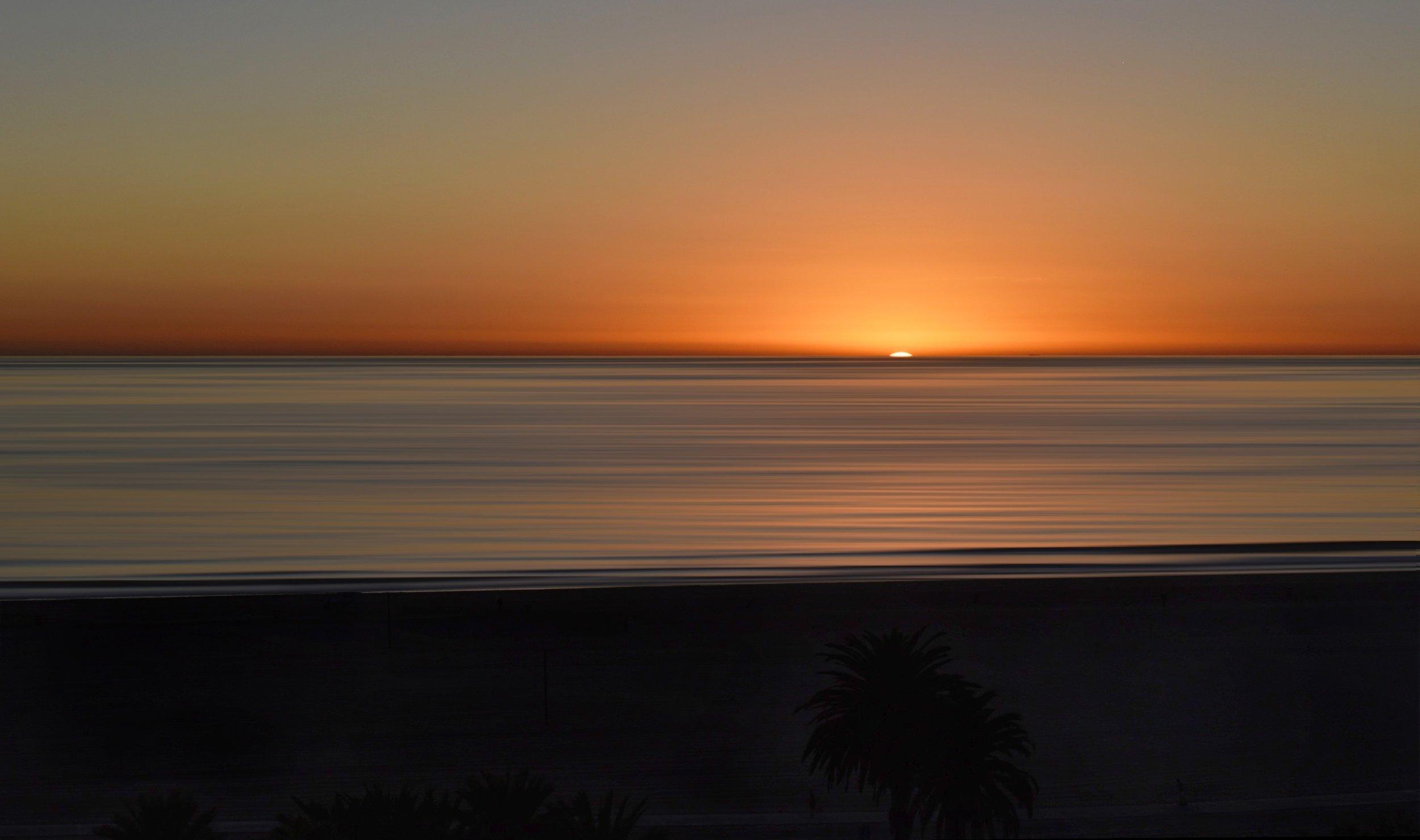 Palms enjoying sunset