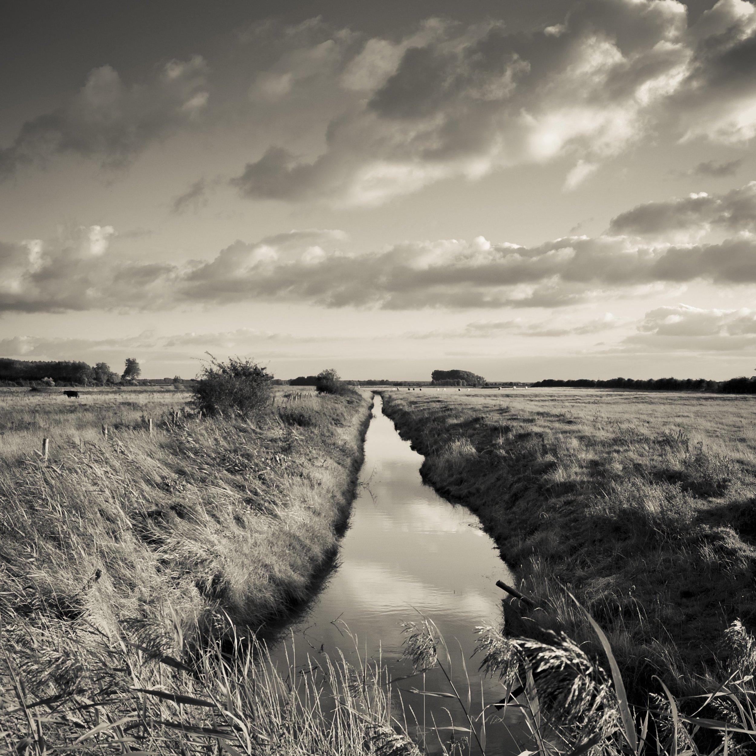 Path/Stream to field