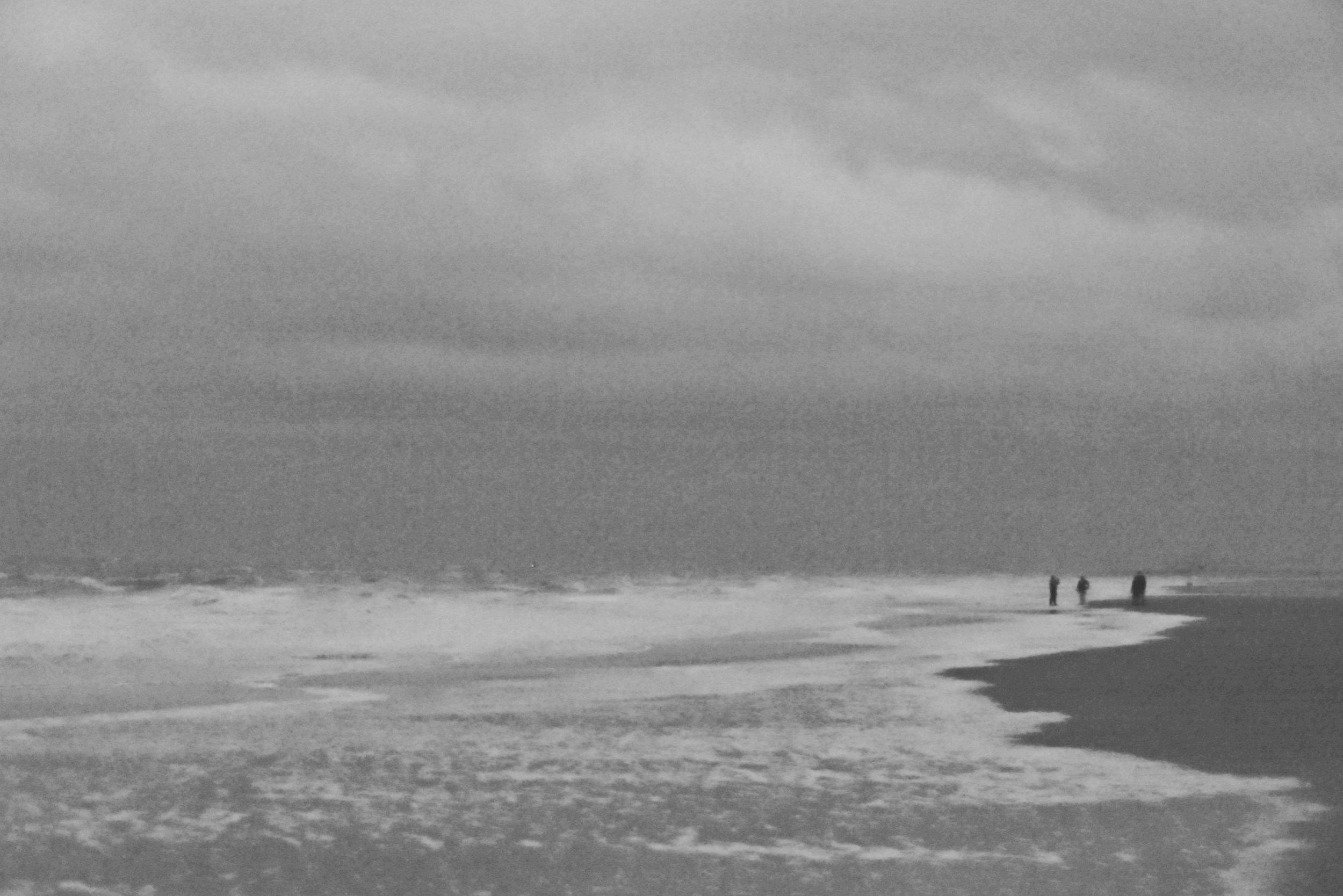 Foggy beach day