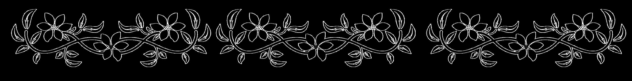 black-and-white-flower-border.png