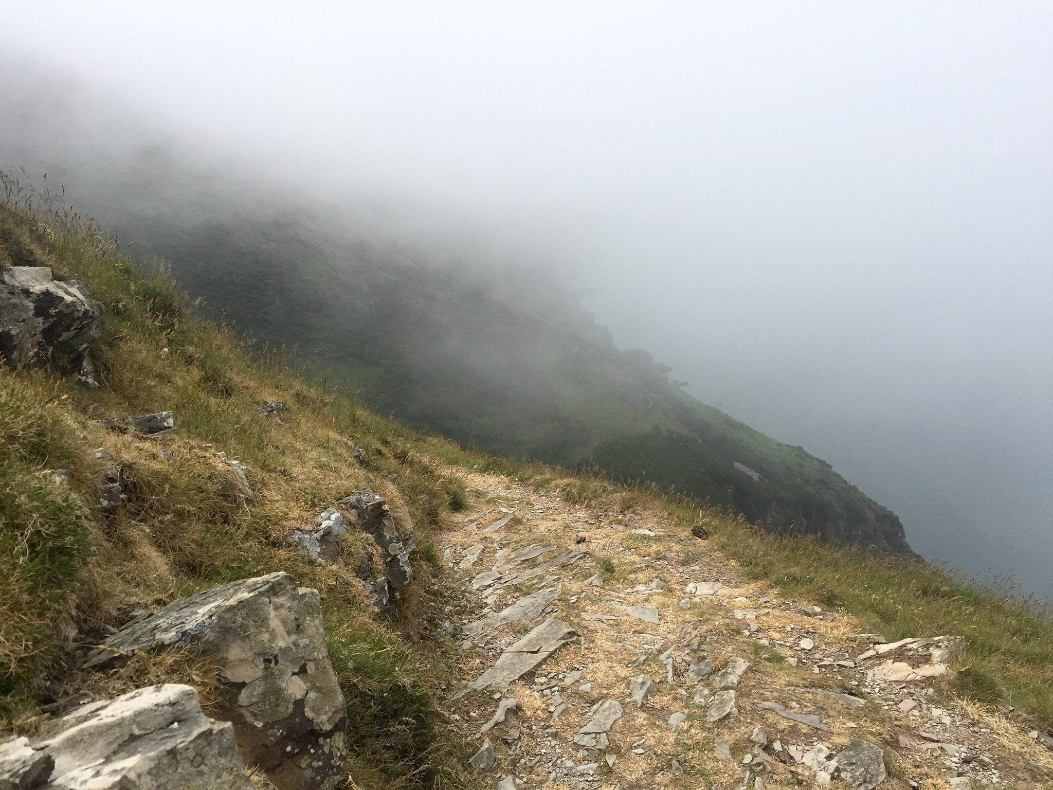 Foggy hike