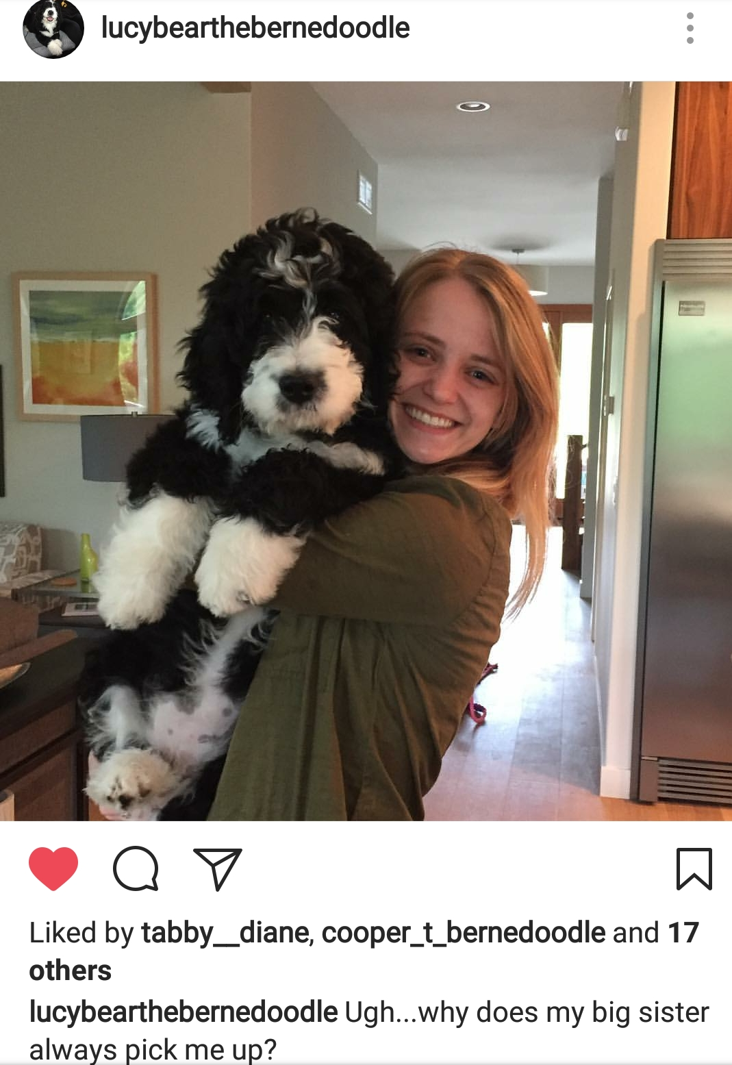 Lucy formerly Tanisha residing in Iowa. You can follow her on Instagram @ Lucybearthebernedoodle