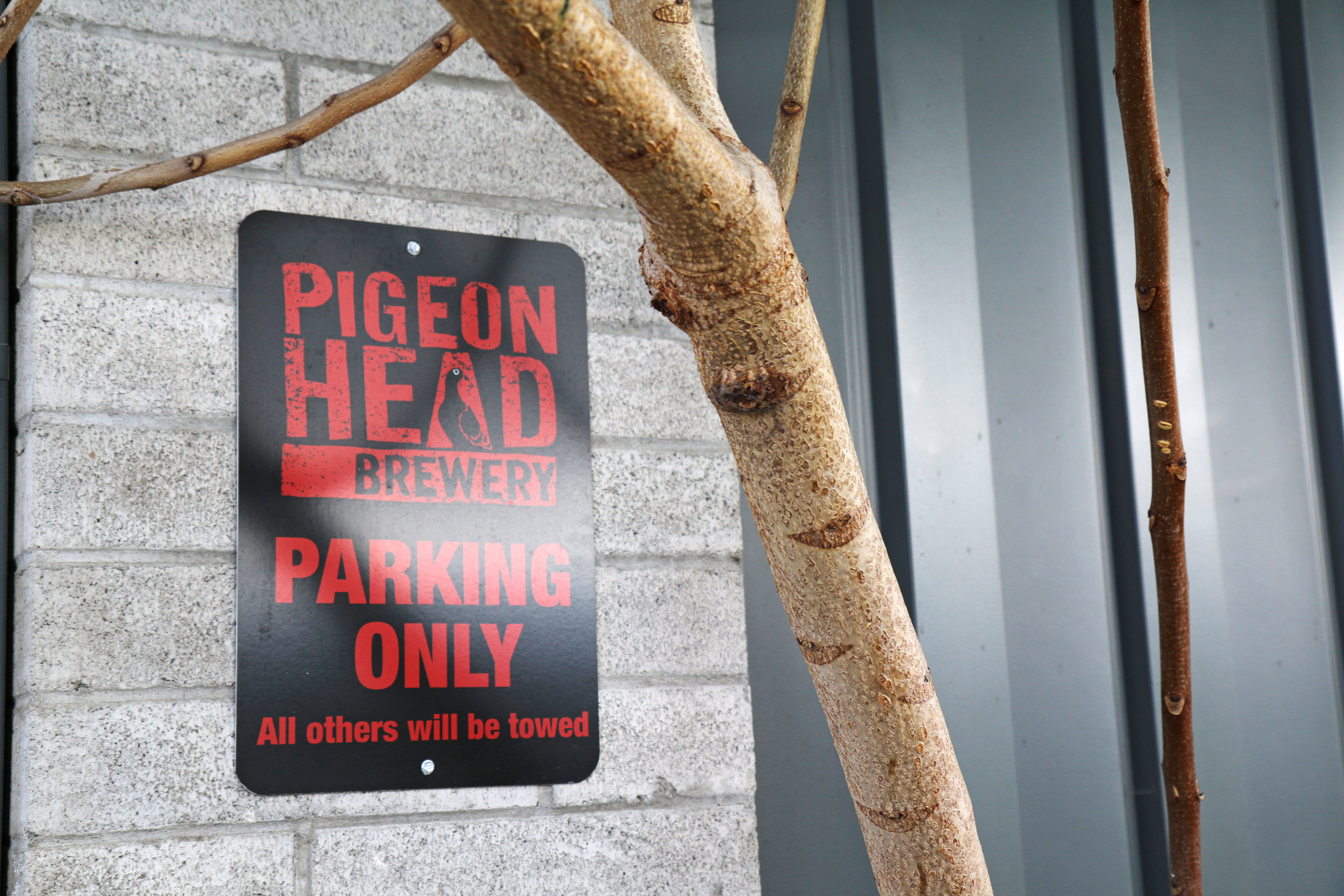 Pigeon Head Brewery in Reno, Nevada