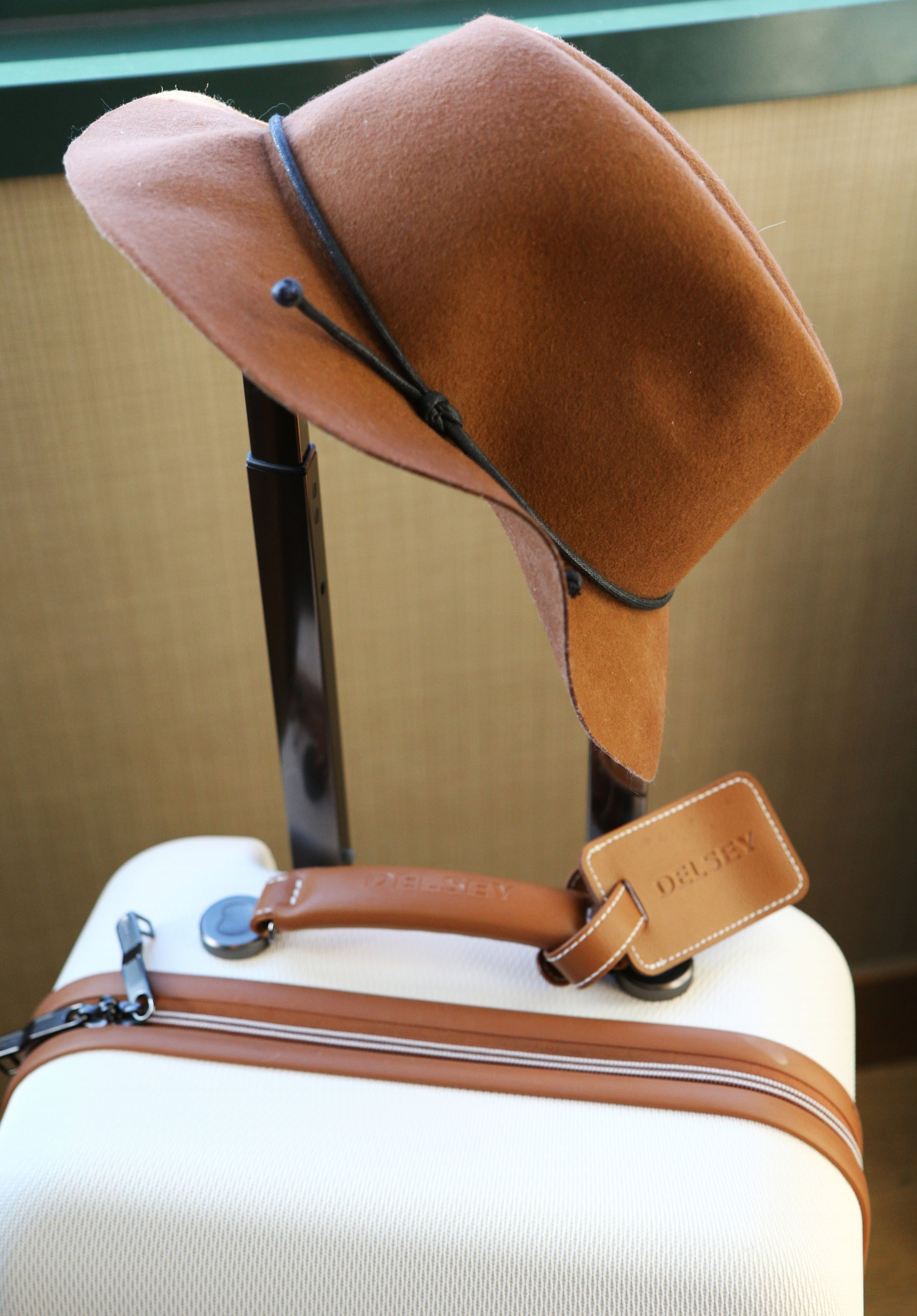 Adorable Delsey luggage
