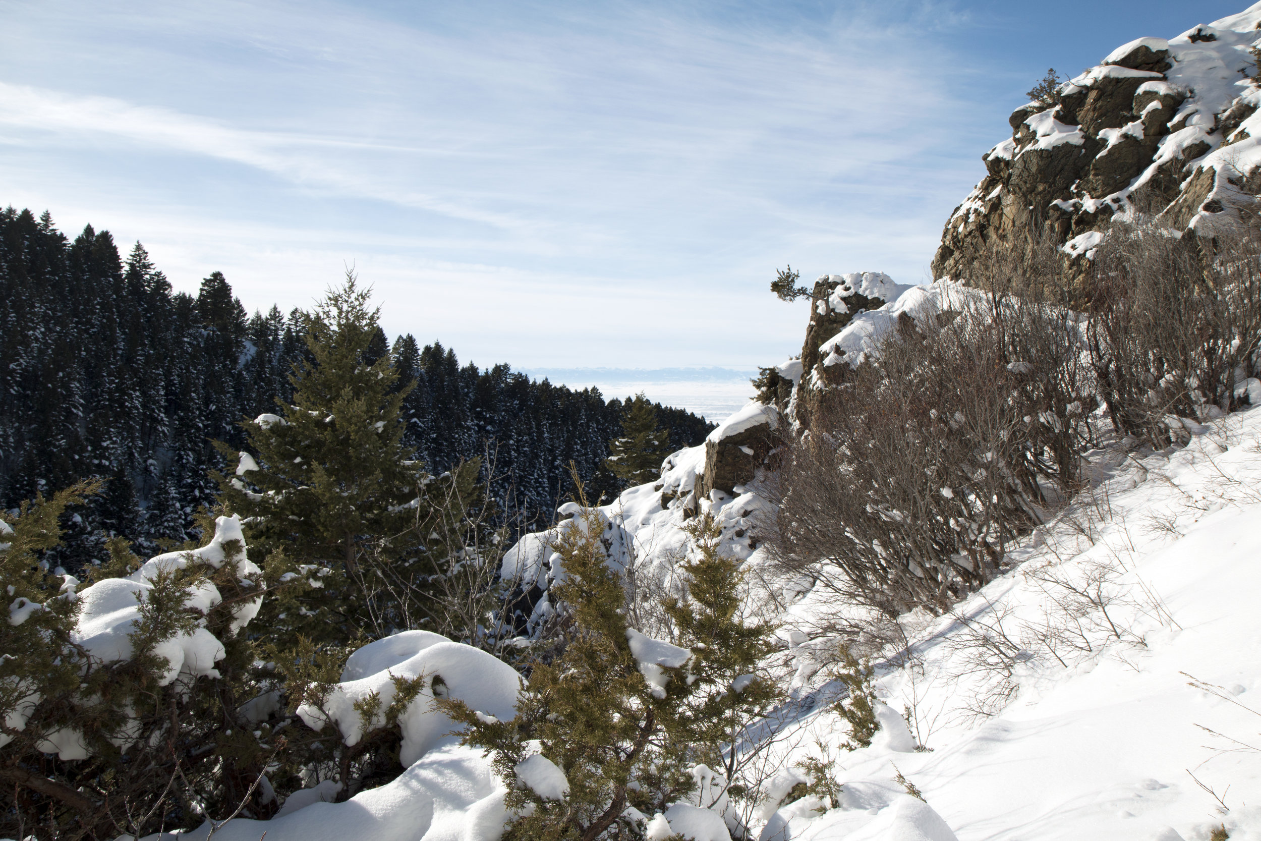 Sypes Canyon Hike near Bozeman, Montana