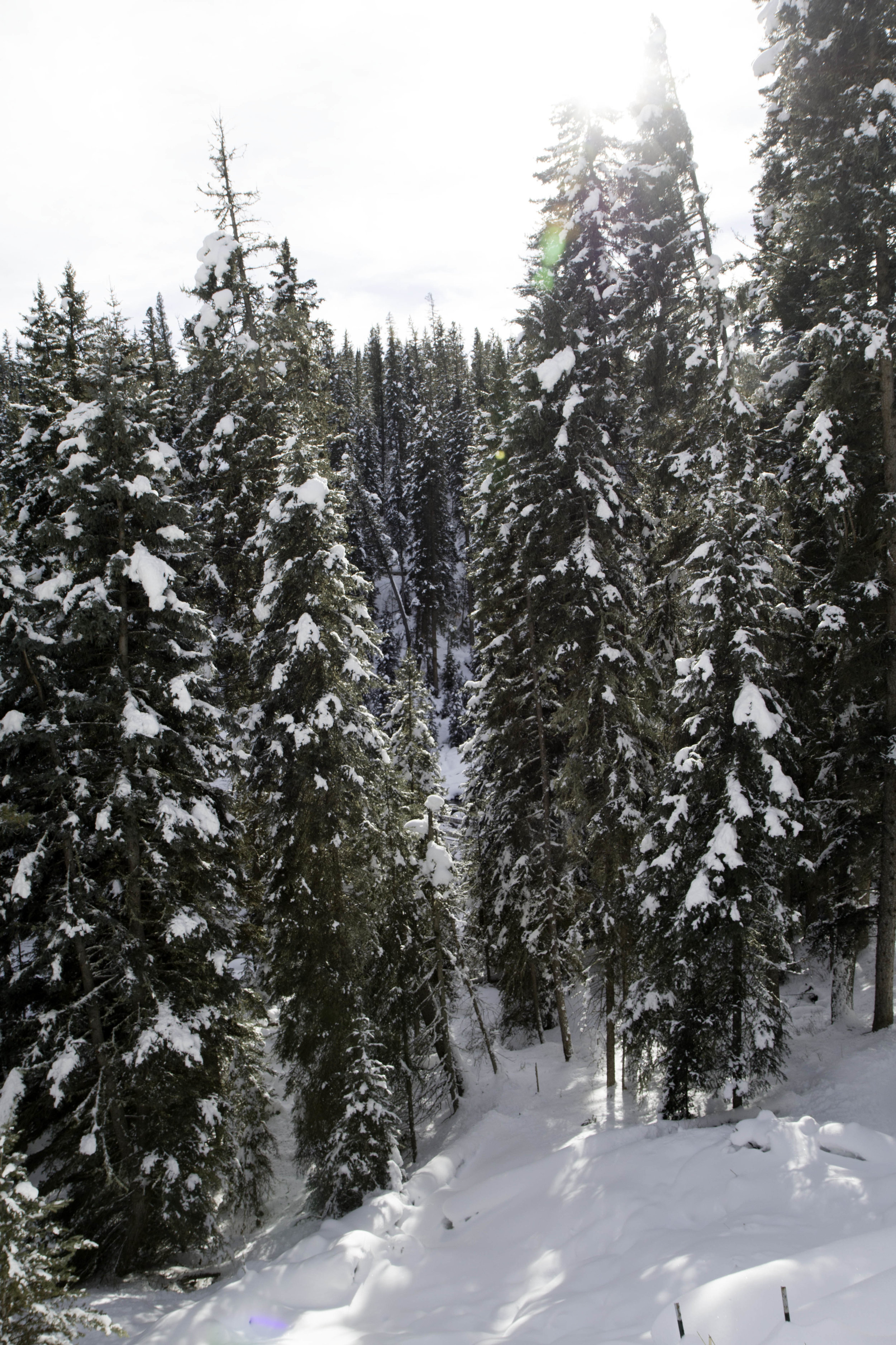 Hiking Ousel Falls Trail near Big Sky Montana in the Winter