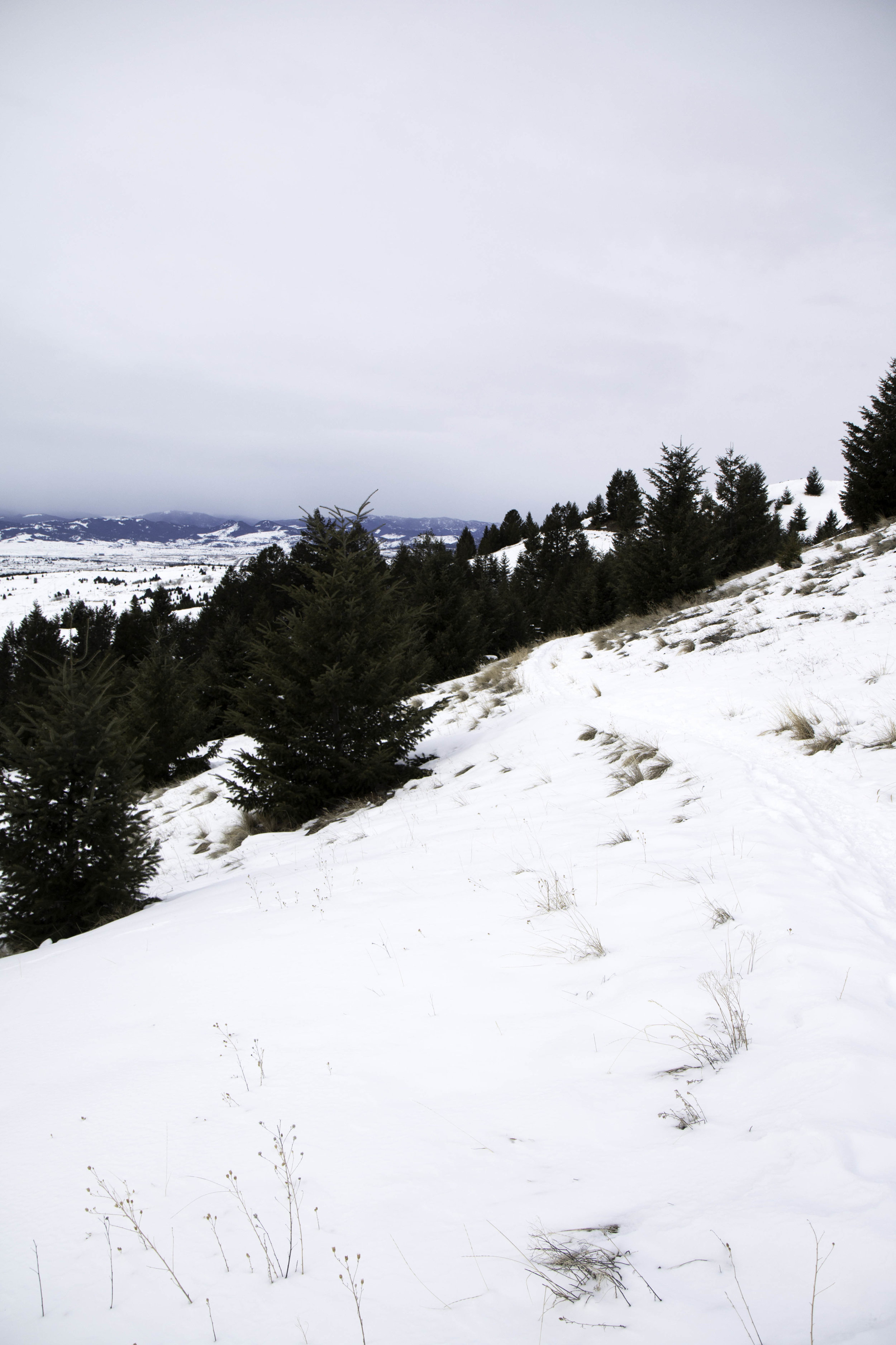 Quick and easy winter hikes - M Trail in Butte, Montana