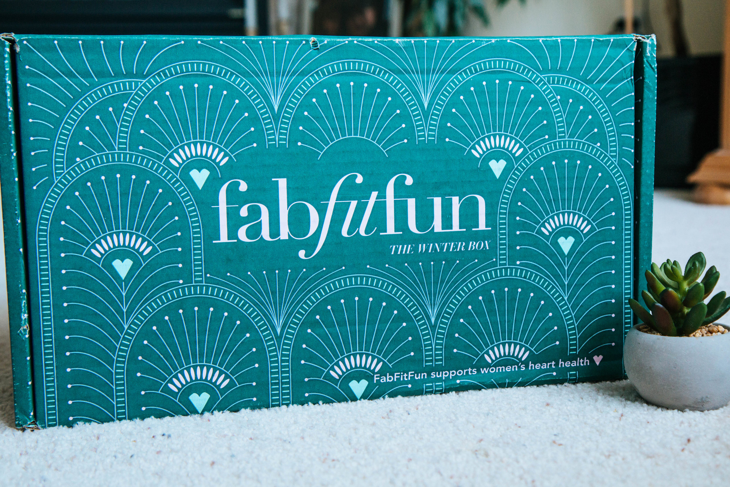 A Review of the Fab Fit Fun Winter Box from 2017