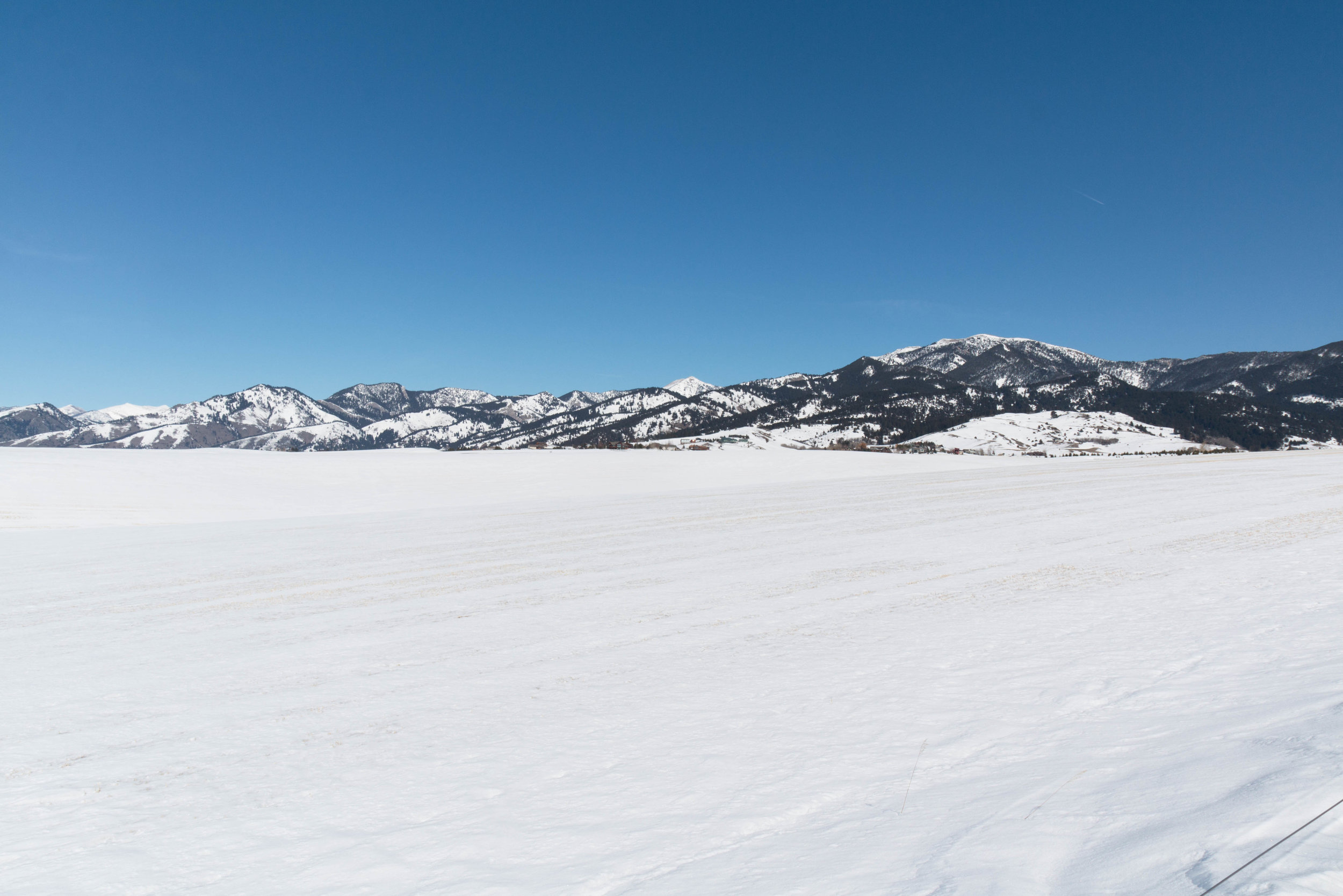 Snowfill Recreation Area and Enclosed Dog Park in Bozeman, Montana