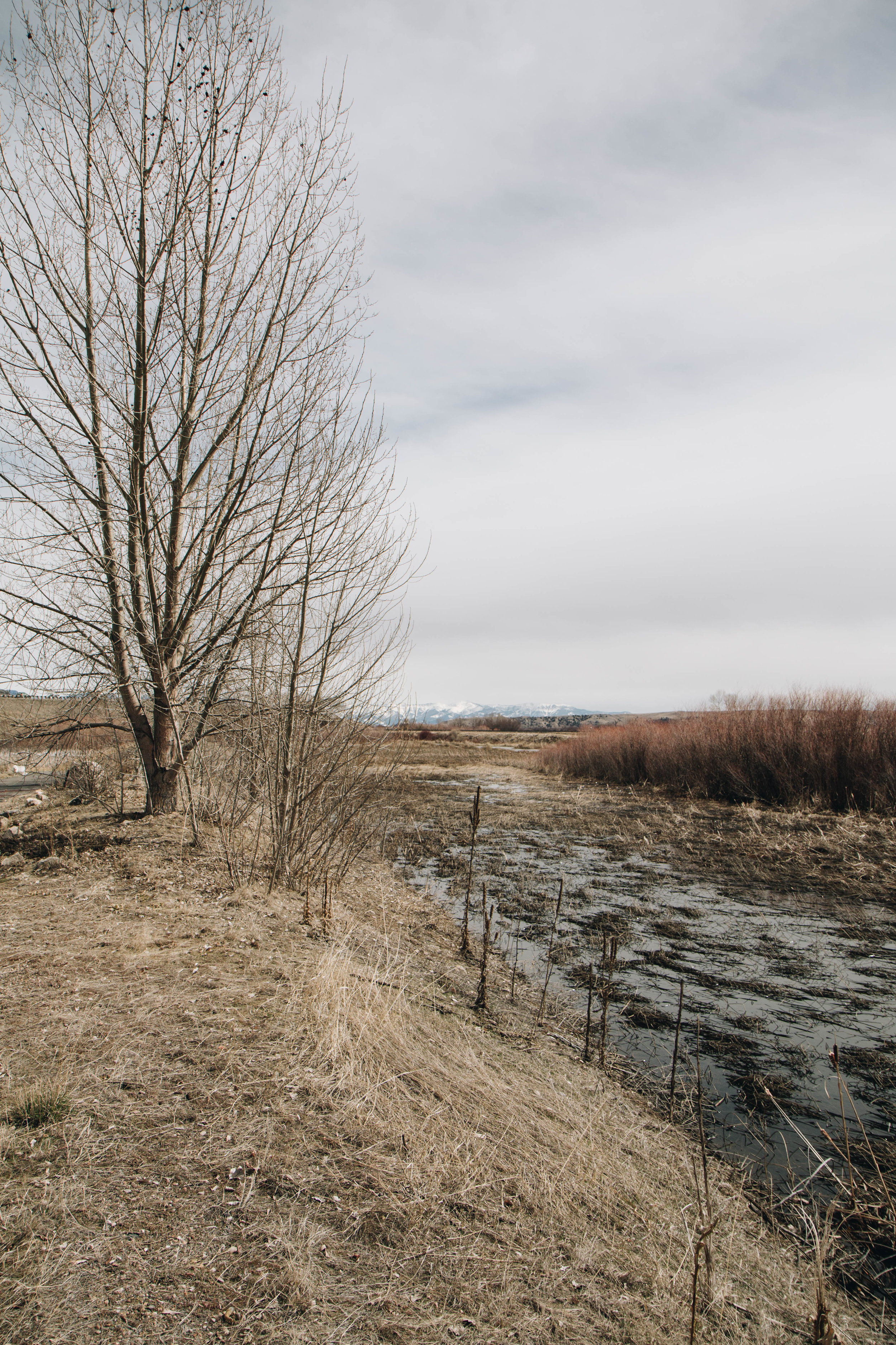 Headwaters Trail System Walking Trail near Three Forks, Montana in the Spring. Great for bikes, walking, jogging, children, and pets.