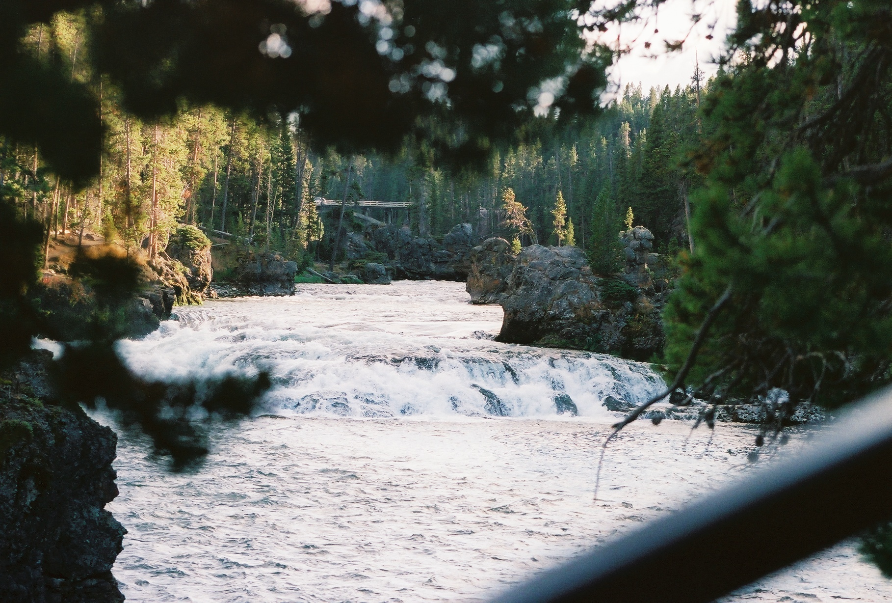Lewis Falls | The Ultimate Travel Guide for Yellowstone National Park by Travel + Lifestyle blogger Bri Sul