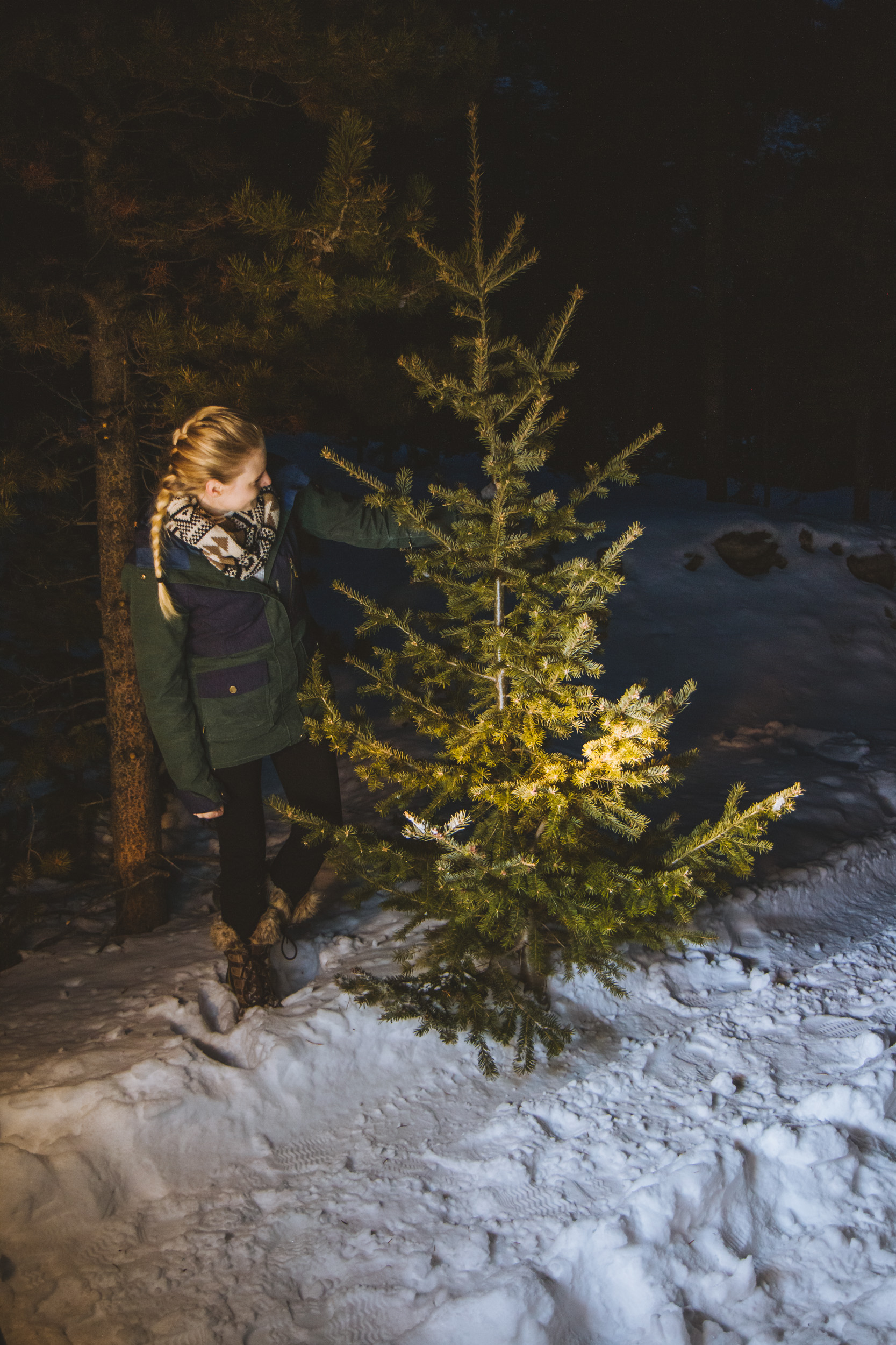 Everything you need to know about cutting down your own Christmas tree. Tips and tricks along with things you wished you would have known!
