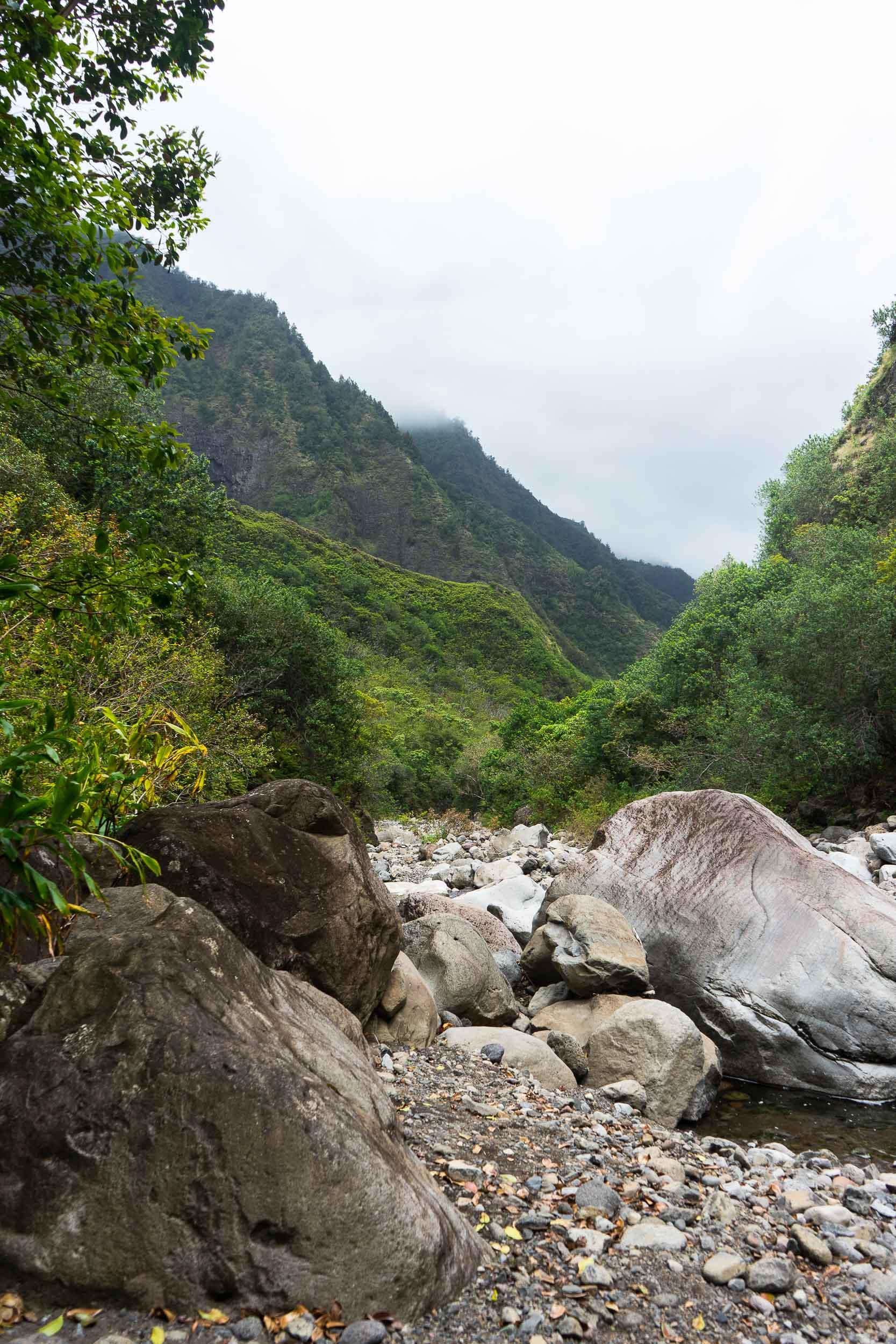 Epic hikes in Iao Valley in Maui. Tips, tricks, and things to do in Maui, Hawaii. The ultimate travel guide along with rare, locals only secrets