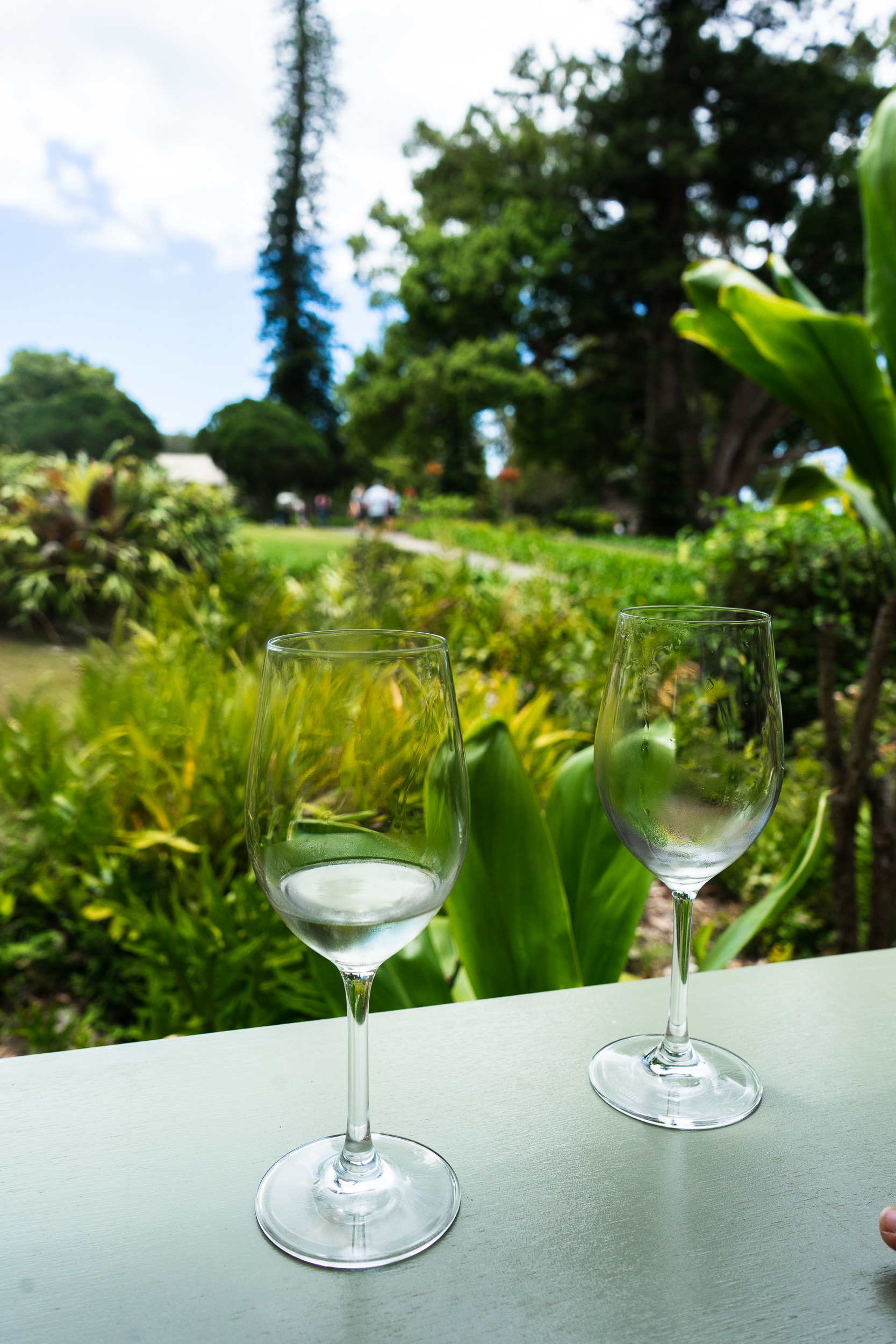 Maui Wine. Tips, tricks, and things to do in Maui, Hawaii. The ultimate travel guide along with rare, locals only secrets