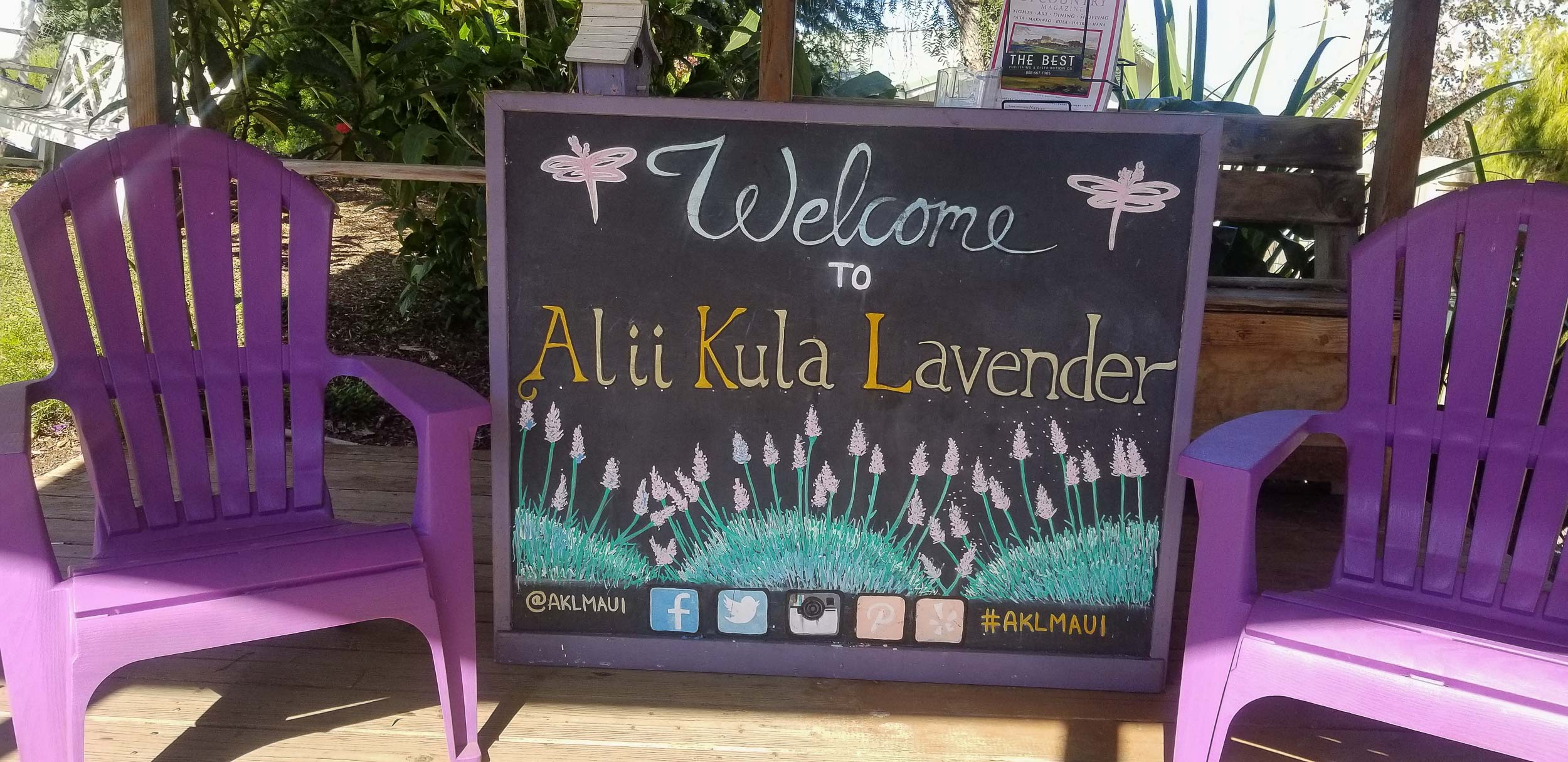 Alii Kula Lavender fields. Tips, tricks, and things to do in Maui, Hawaii. The ultimate travel guide along with rare, locals only secrets