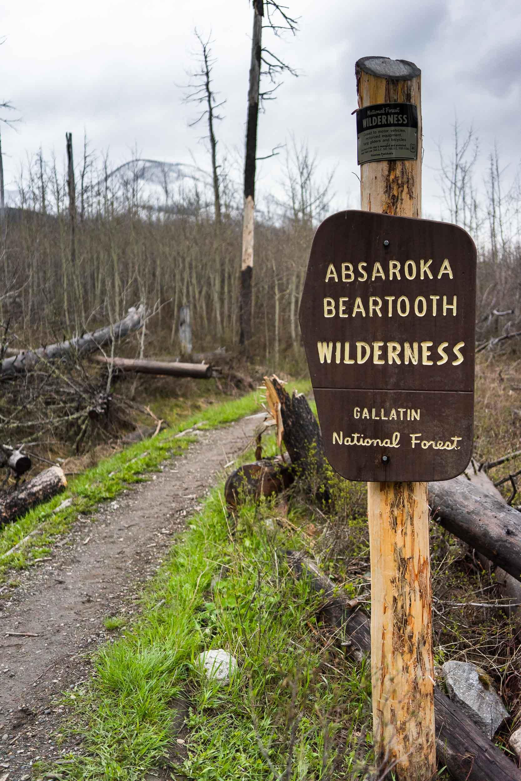 West Boulder Meadows in Absaroka Range near Big Timber, Montana