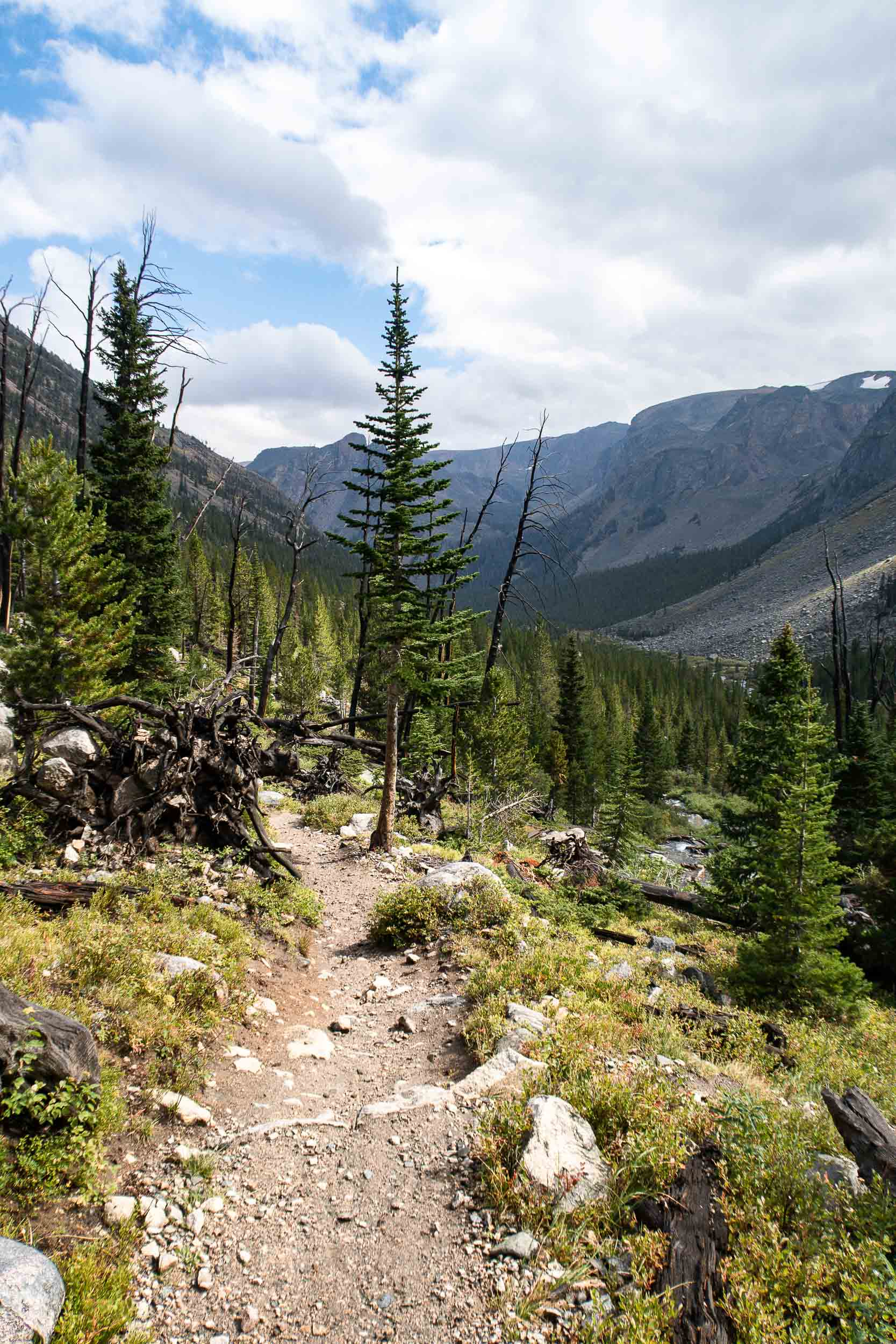 Glacier Lake is a 4.6 mile moderately trafficked out and back trail located near Red Lodge that contains beautiful views, wildflowers, raspberries, and huckleberries.