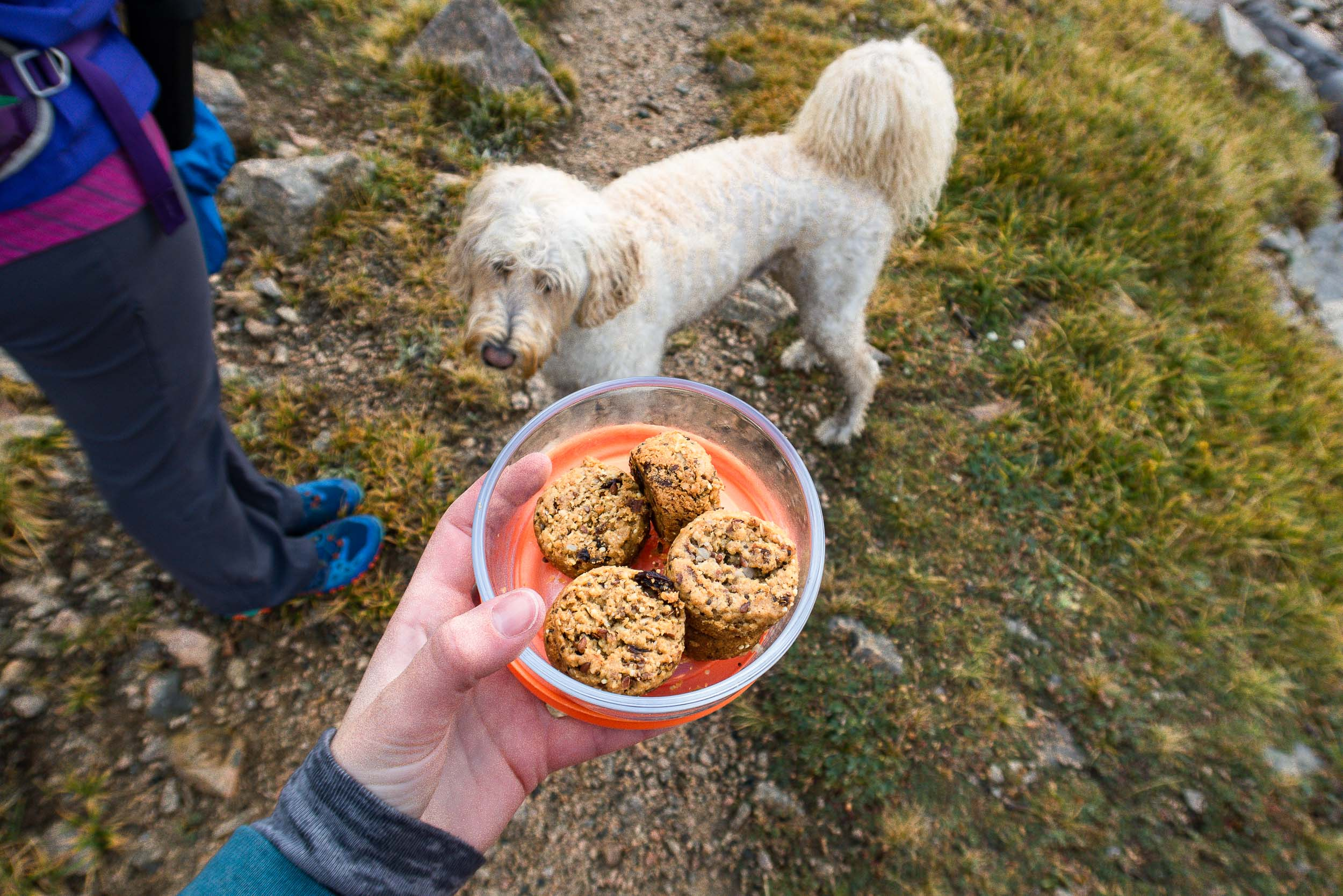 Tip and tricks for having ZERO WASTE while hiking and backpacking.